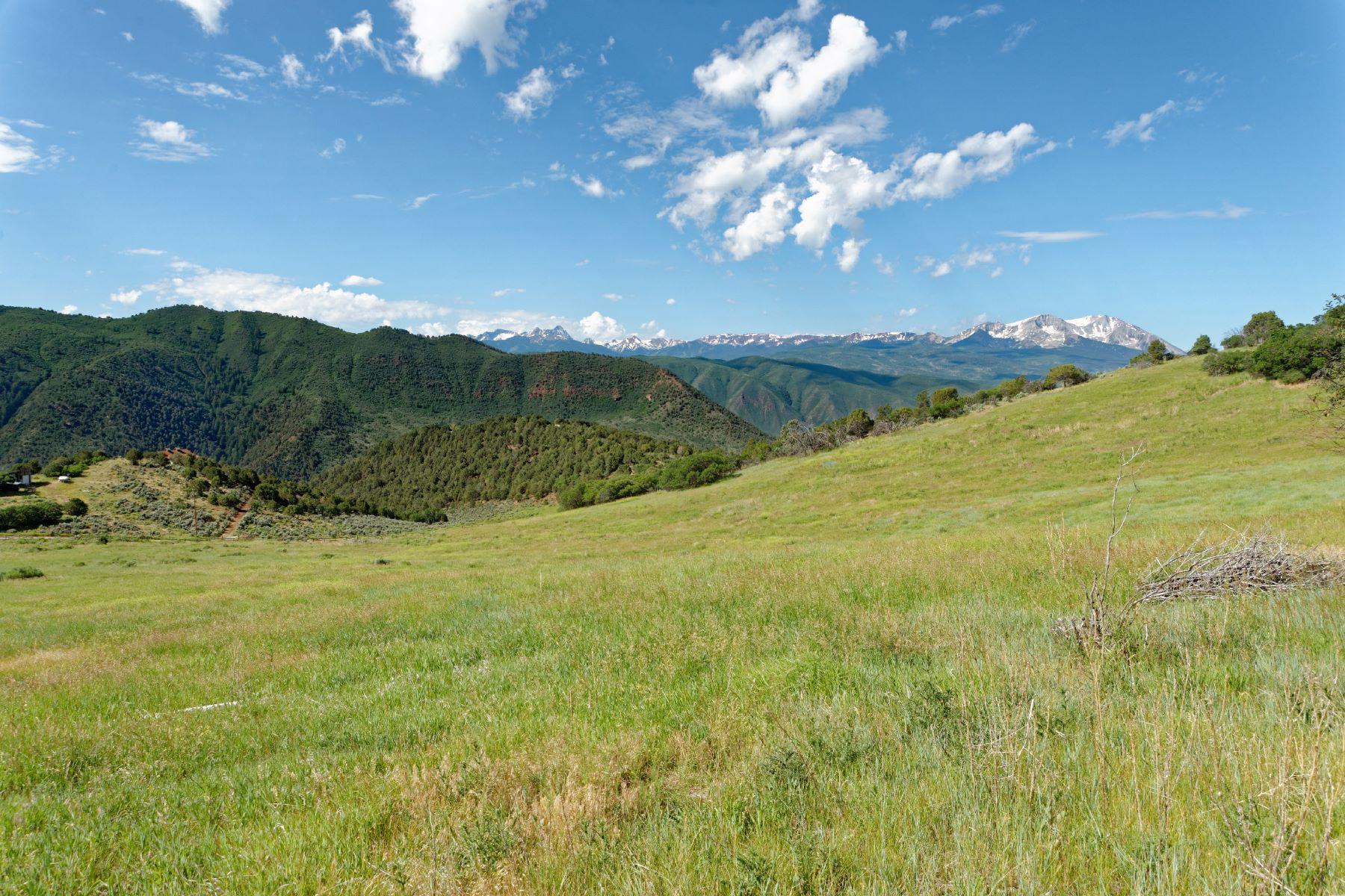 Basalt Mountain Ranch TBD Cedar Drive Basalt, Colorado 81621 United States