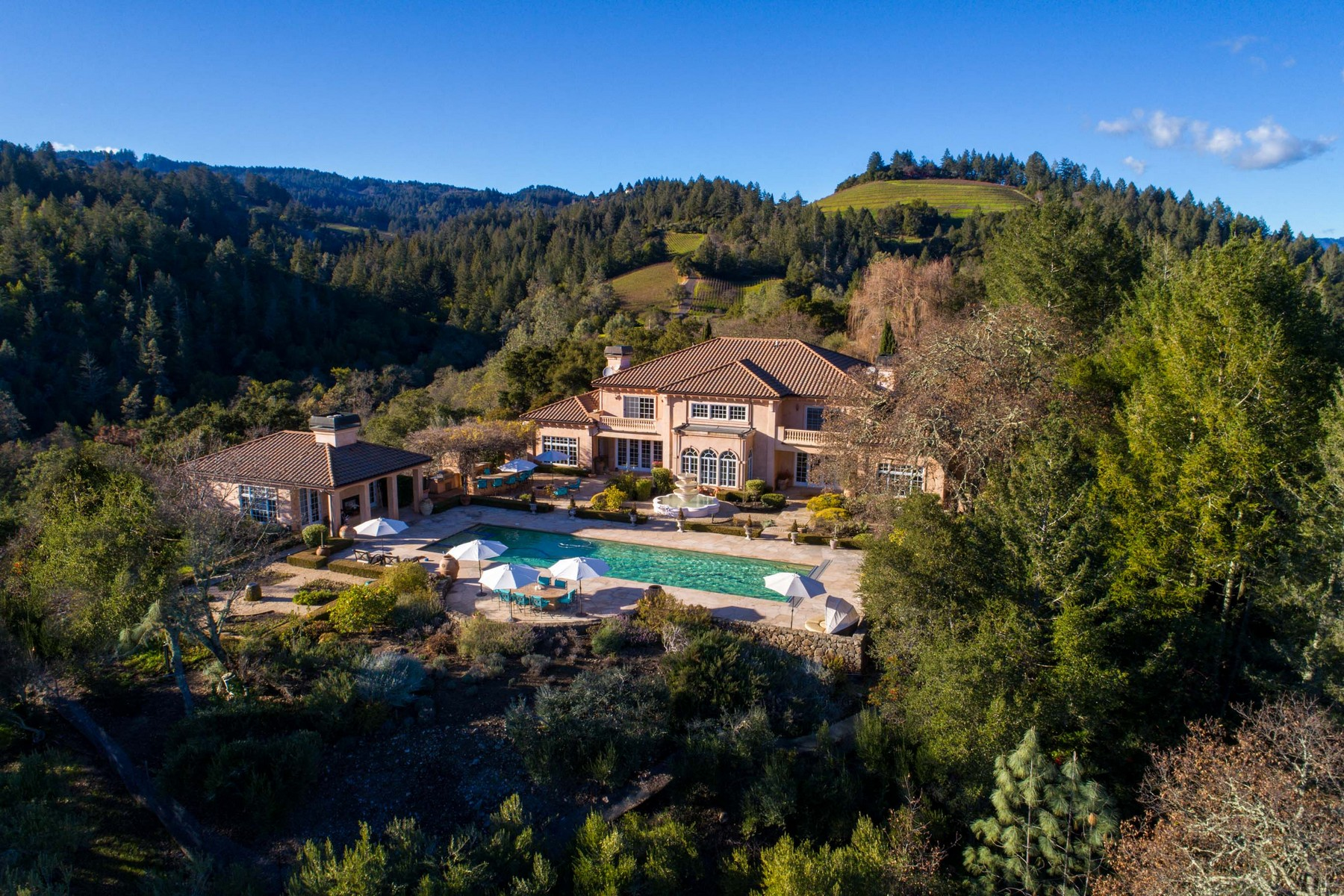 Additional photo for property listing at Majestic 40 Acre Vineyard Estate 2910 Spring Mountain Road St. Helena, California 94574 United States