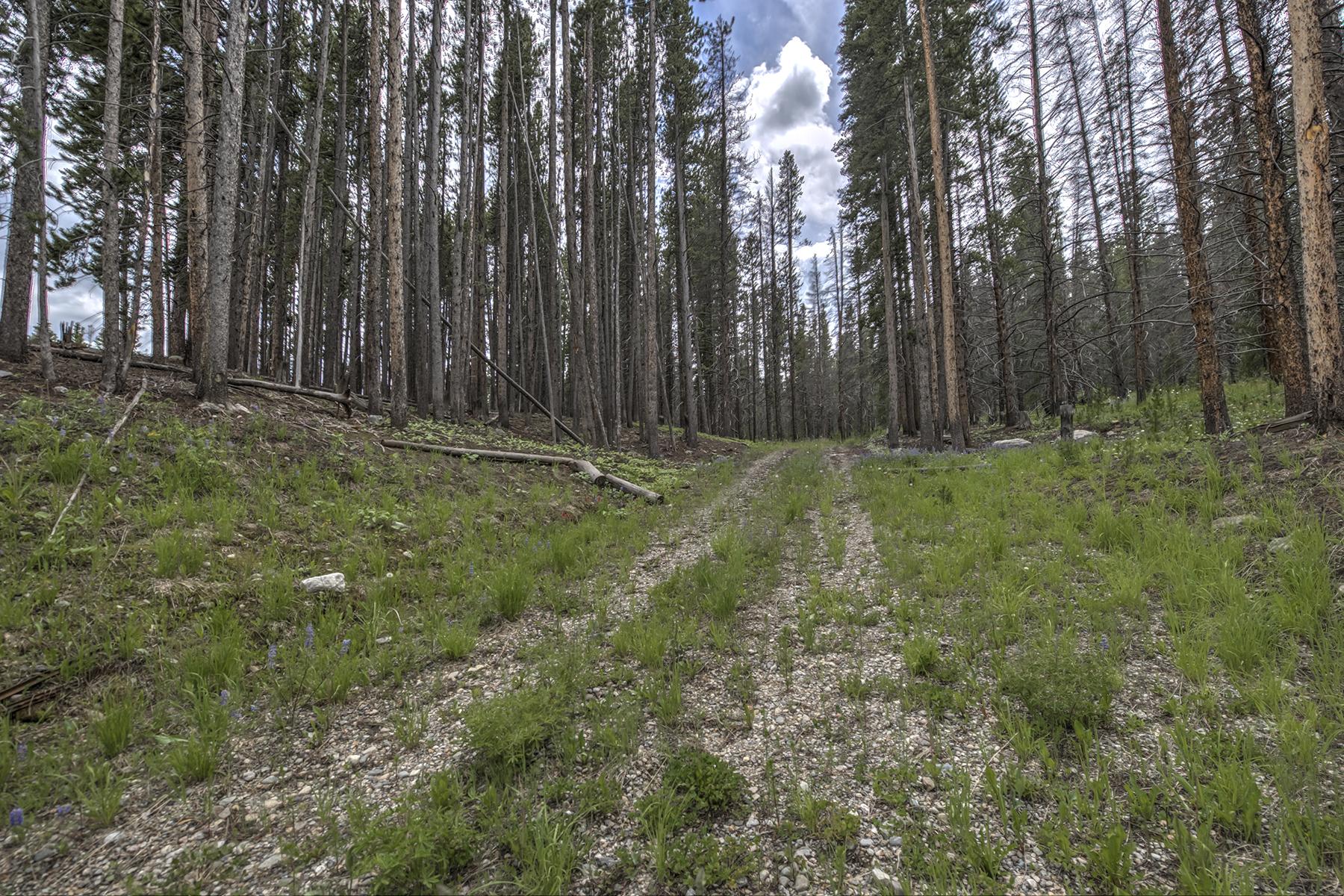 Terrain pour l Vente à Gold King 570 Gold King Way Breckenridge, Colorado, 80424 États-Unis
