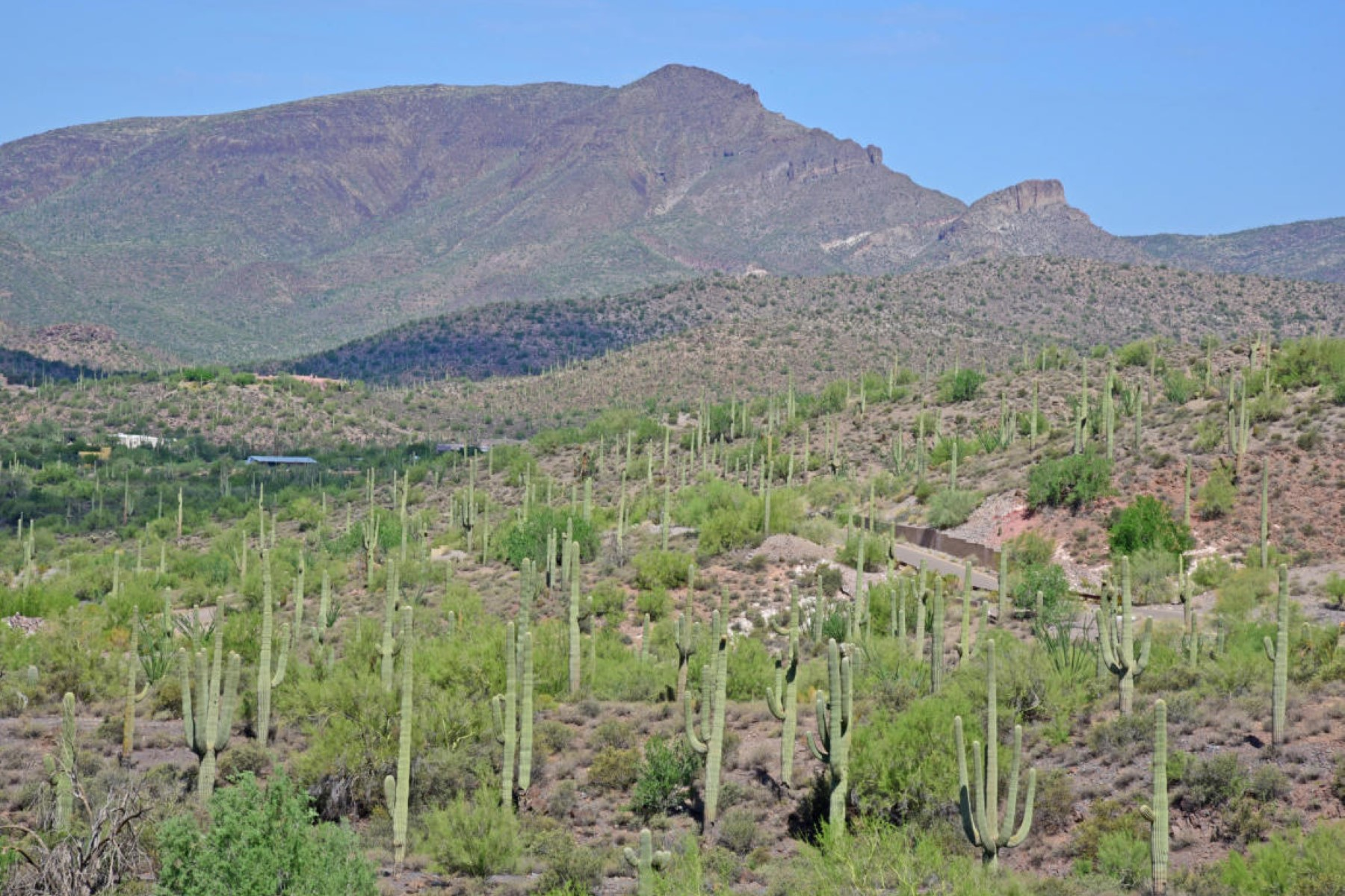 土地 のために 売買 アット Beautiful serenity of the Sonoran Desert 7347 E Continental Mountain Dr lot 9 Cave Creek, アリゾナ, 85331 アメリカ合衆国