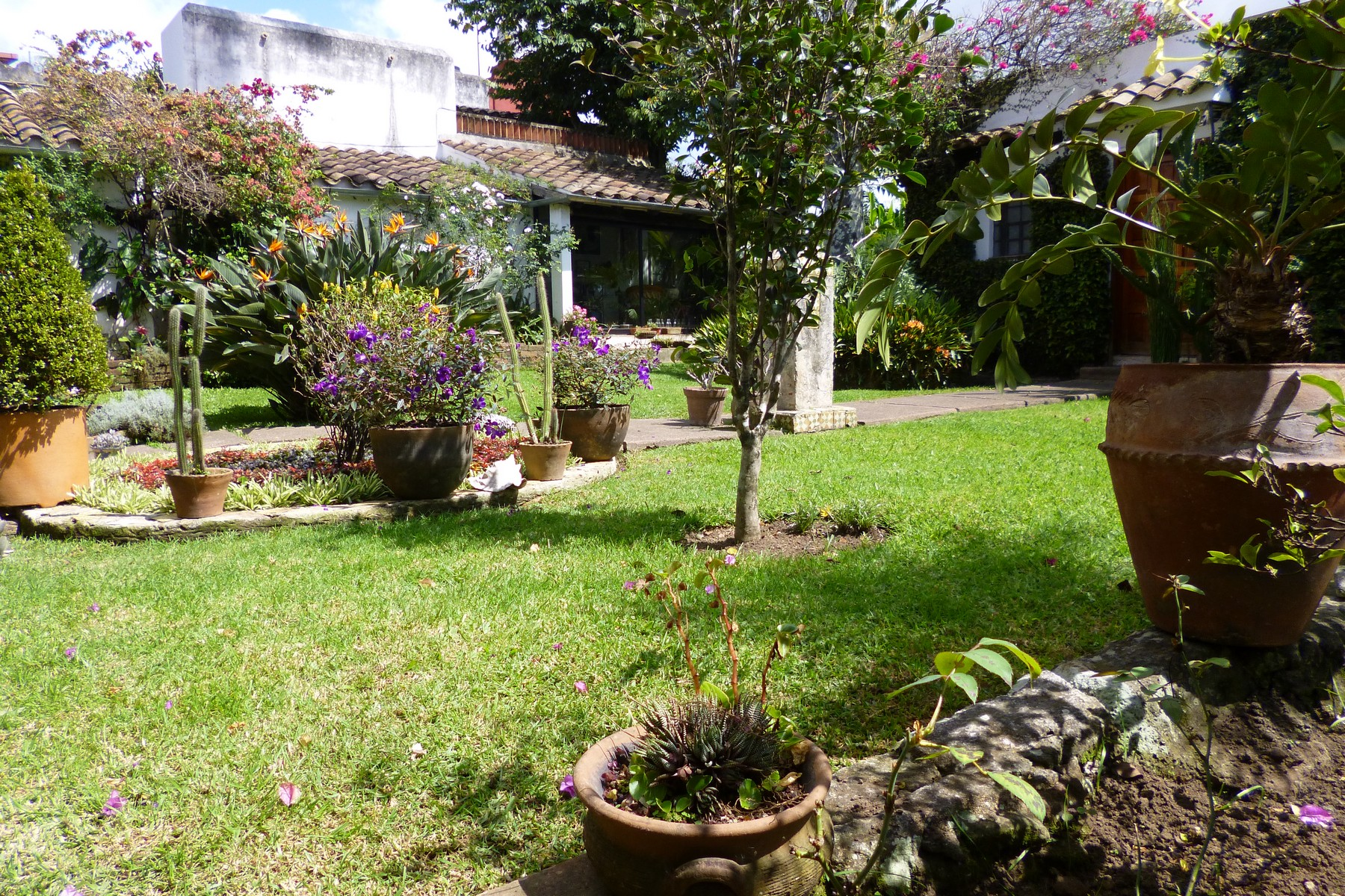 Additional photo for property listing at 18th century luxury mansion downtown: La Mariquinta  Xalapa, Other Areas In Mexico 91013 Mexico