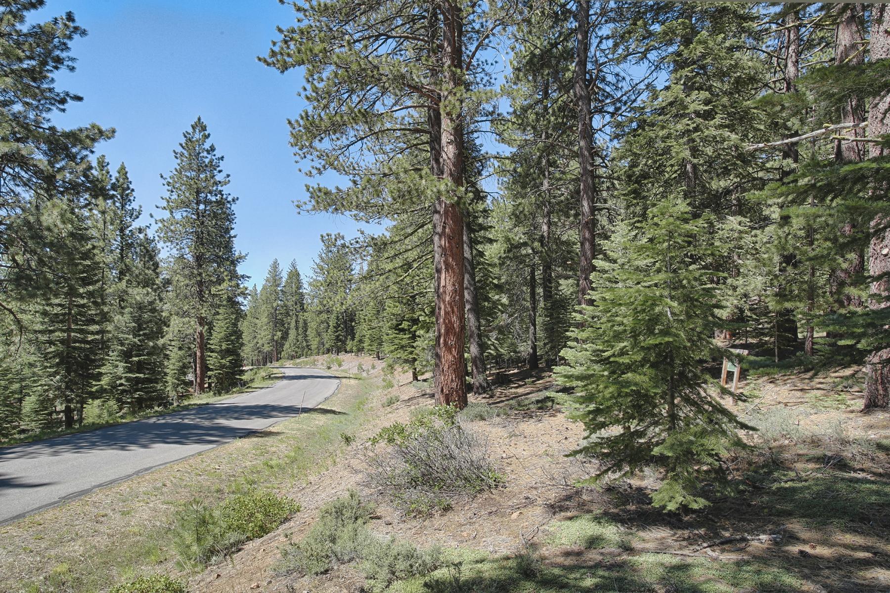 Additional photo for property listing at 12008 Saddleback Drive  特拉基, 加利福尼亚州 96161 美国