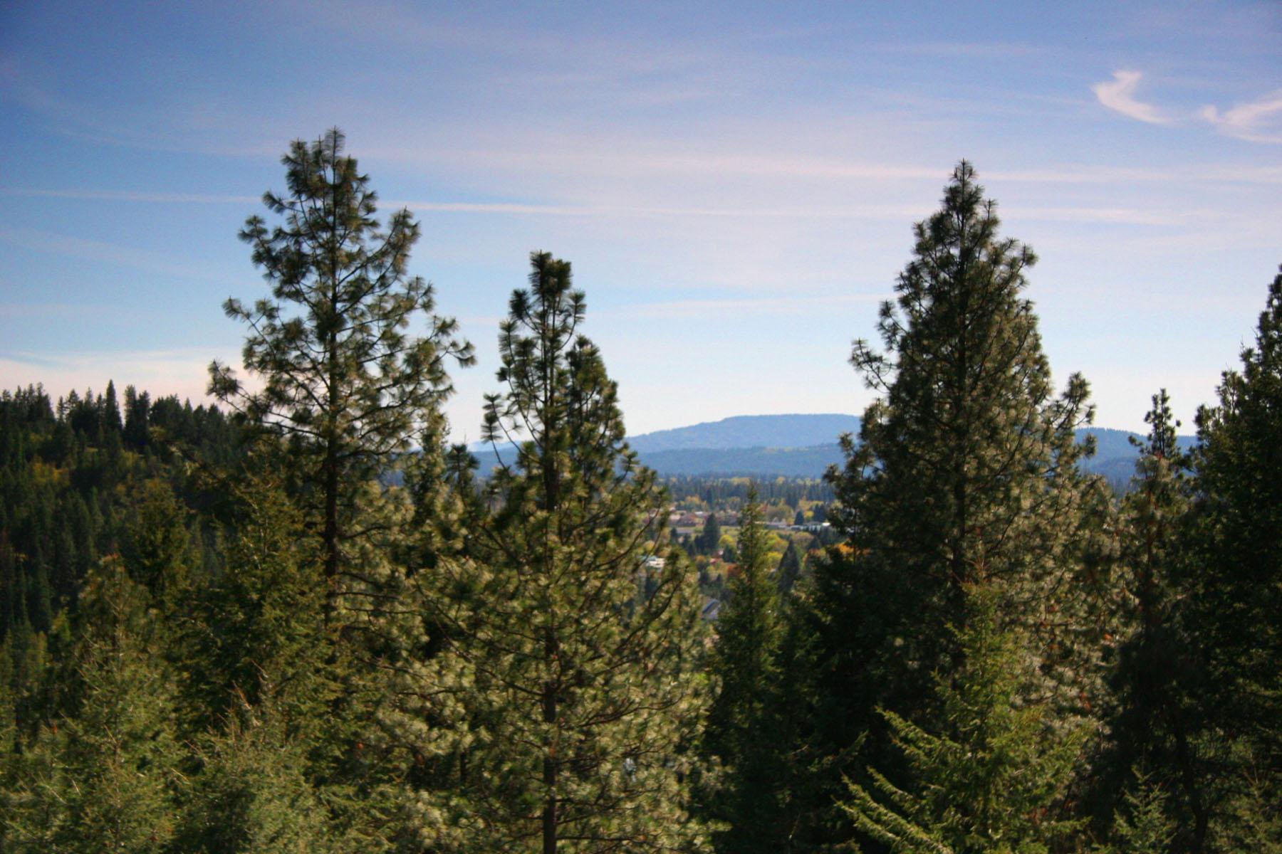 Terrain pour l Vente à This 4.2 acres in Hayden is truly an amazing estate property! NNA 4.2 E Sundown Dr Hayden, Idaho, 83835 États-Unis