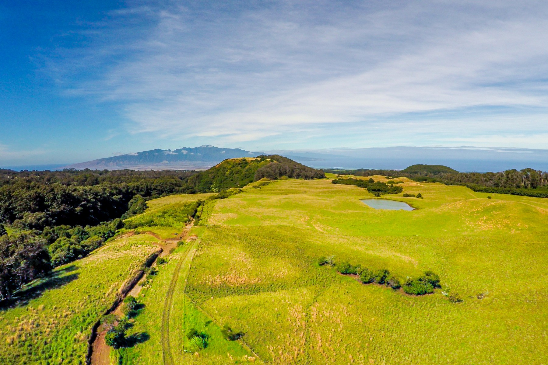 Terreno por un Venta en Piiholo Ranch 325 Waiahiwi Road, Piiholo Ranch Makawao, Hawaii, 96768 Estados Unidos