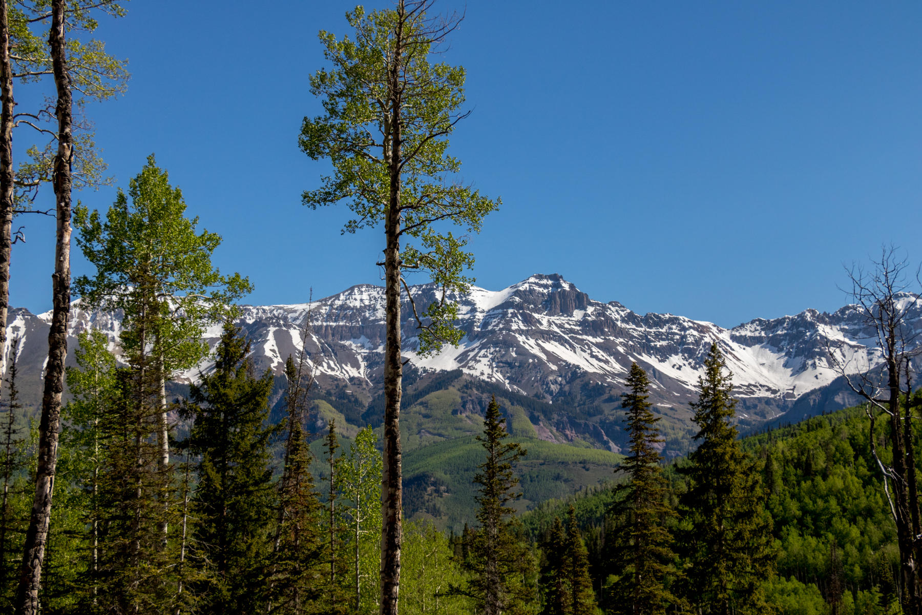 Land for Sale at 2 Stonegate Drive v2 Stonegate 166 AR2 3 Telluride, Colorado, 81435 United States