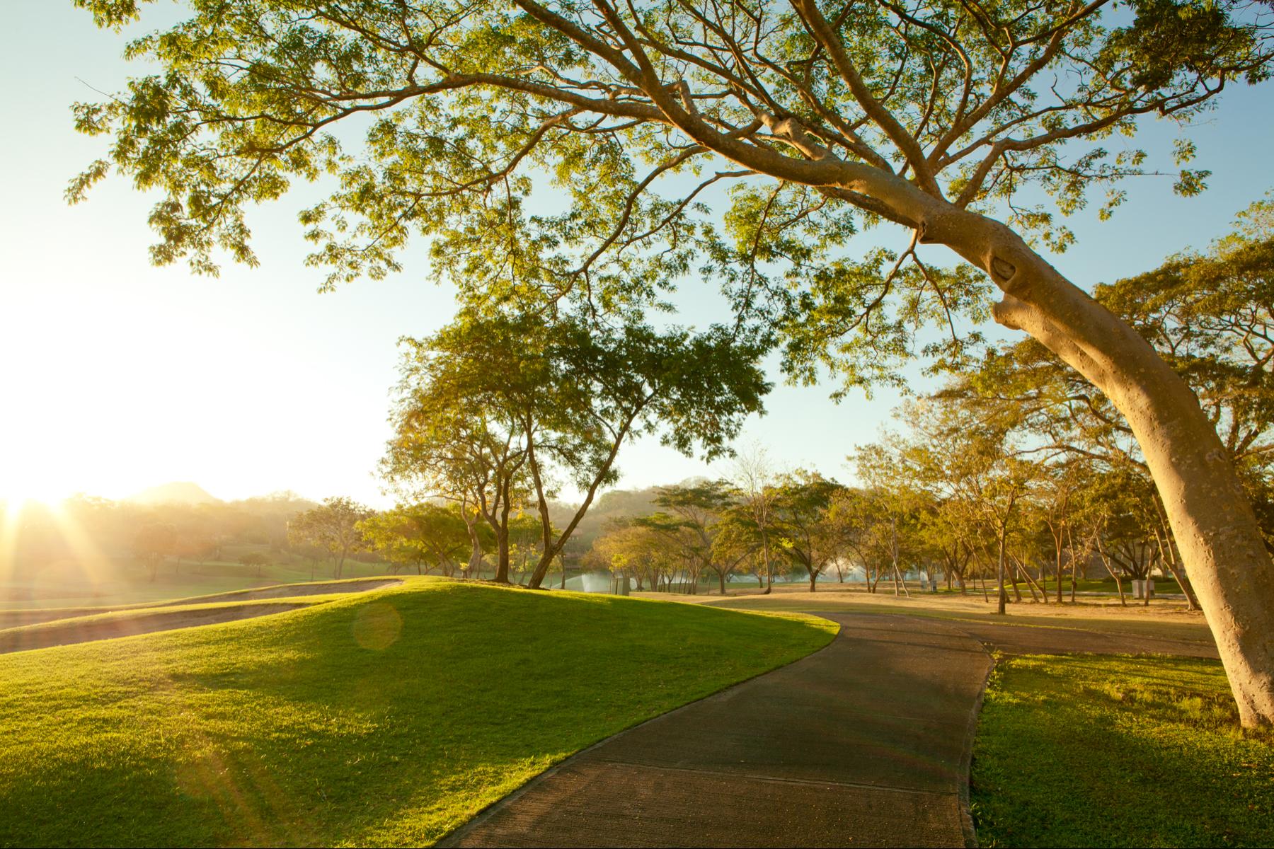 Terreno por un Venta en Llama del Bosque Lot #9 Reserva Conchal, Guanacaste, 50308 Costa Rica