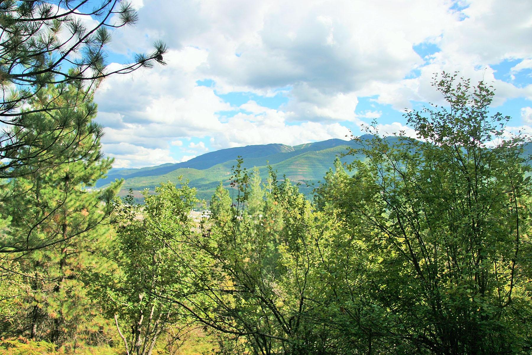 Terrain pour l Vente à 40 acres with a river running through it!! NNA South Fork Ridge 40-1 Smelterville, Idaho, 83868 États-Unis