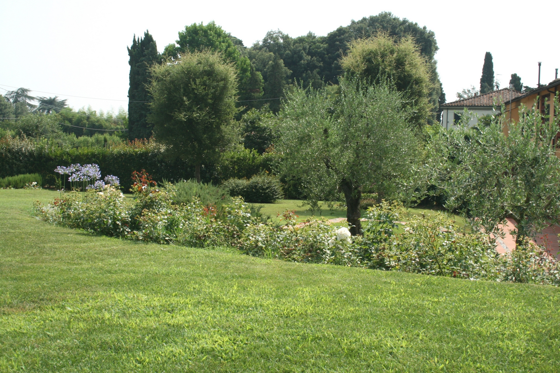 Additional photo for property listing at Adorable farmhouse in the Lucca country-side Via della Fornace Vicopelago, Lucca 55100 Italien