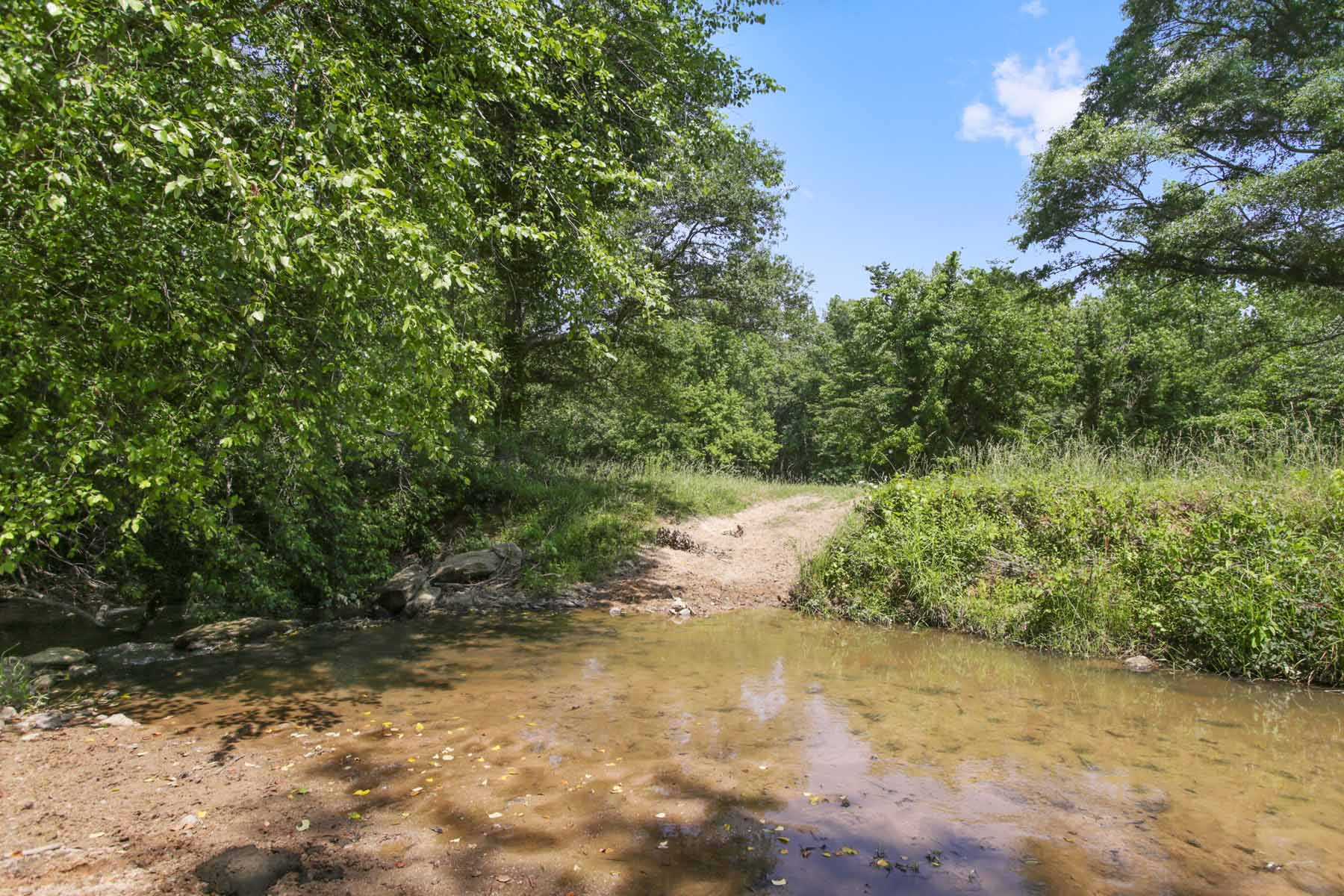 Additional photo for property listing at Rolling Pastures With Ponds and Beautiful Hardwoods 7770 Jones Ferry Road Chattahoochee Hills, 喬治亞州 30268 美國