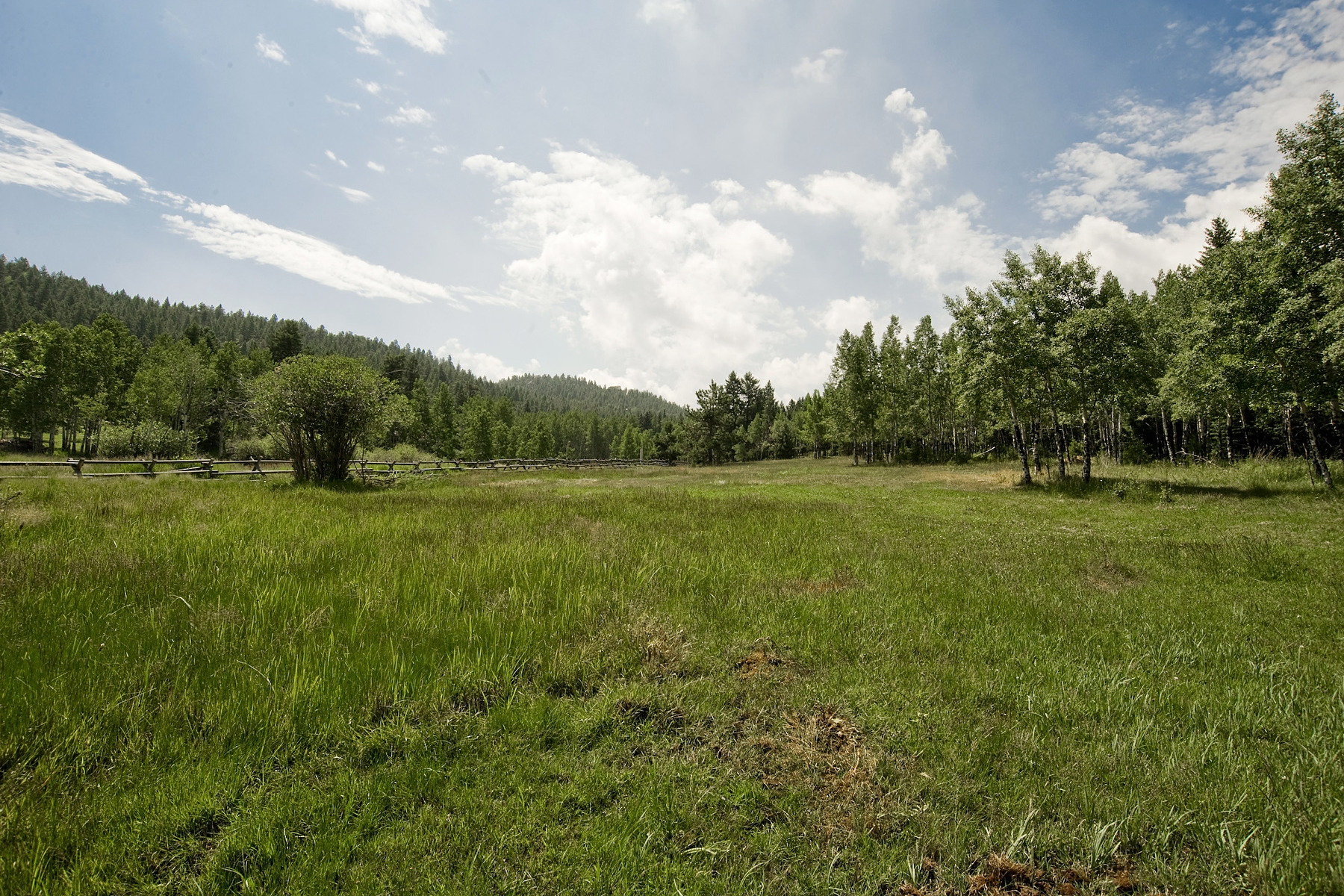 Cub Creek Ranch 6472 Little Cub Creek Road Evergreen, Colorado 80439 United States
