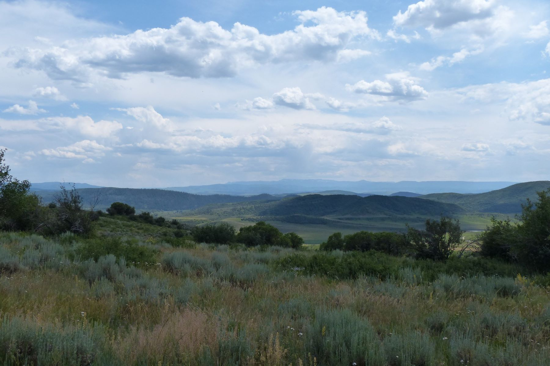 Additional photo for property listing at 35 ACRES WITH TOP OF THE WORLD VIEWS TBD RCR 46 Steamboat Springs, Colorado 80487 États-Unis