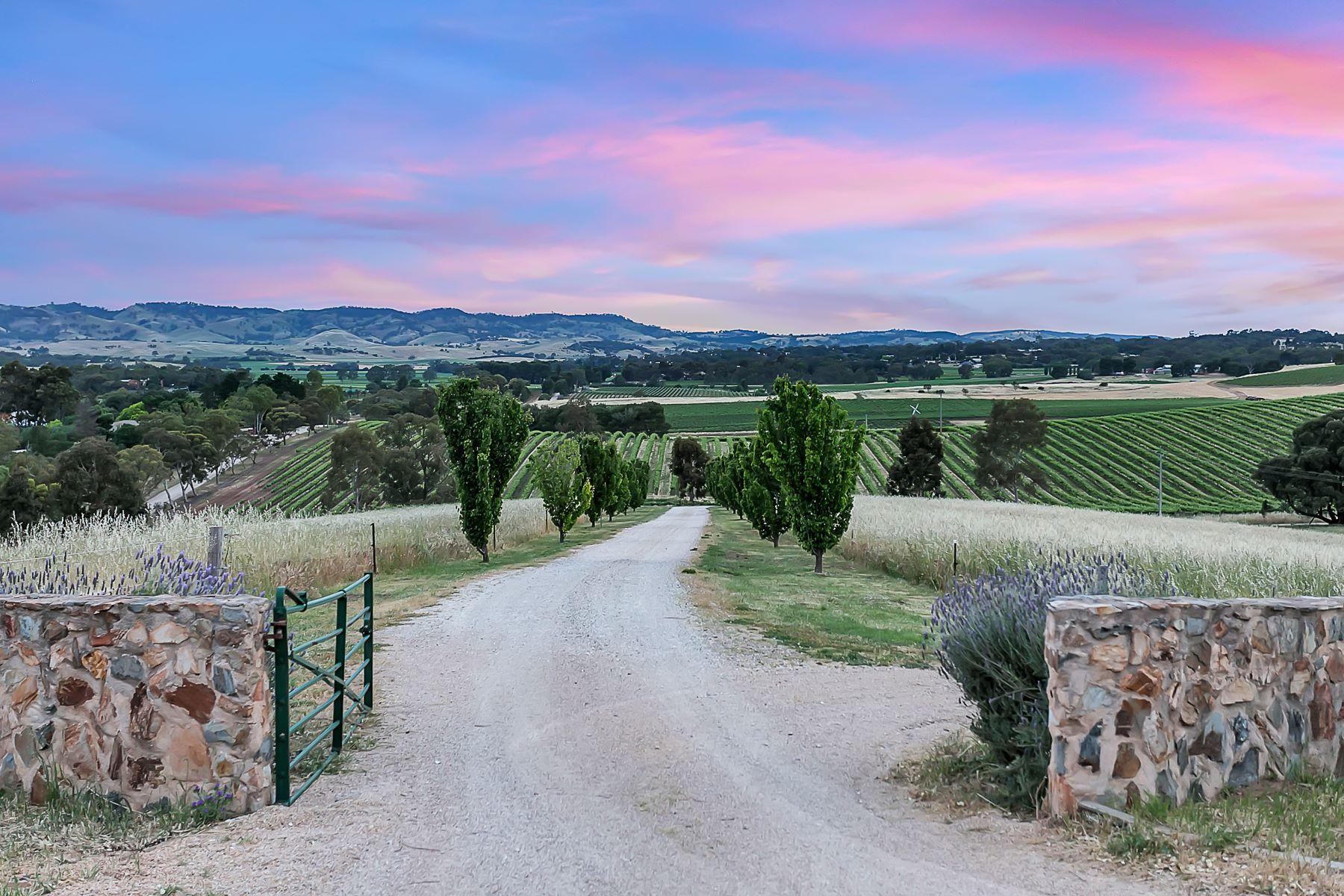معمل نبيذ للـ Sale في Breathtaking Barossa Valley Estate 219 Yaldara Drive Other South Australia, South Australia, 5351 Australia