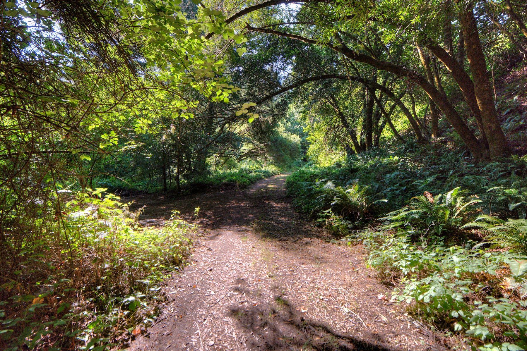 Land for Sale at Refuge and Retreat 222 Camino Margarita Nicasio, California 94946 United States