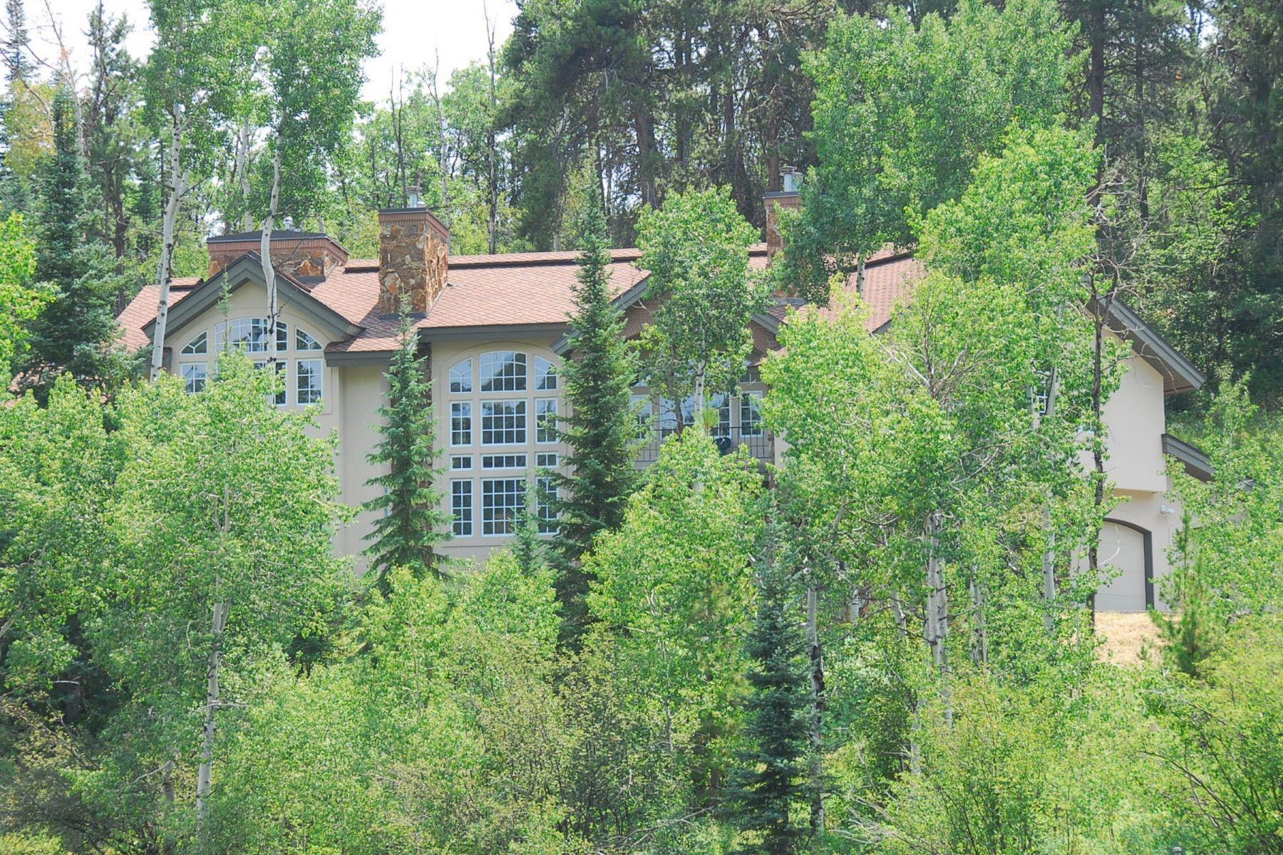 Einfamilienhaus für Verkauf beim Dakota Ridge Gem, Lot 54 31645 Aspen Ridge Road Steamboat Springs, Colorado, 80487 Vereinigte Staaten