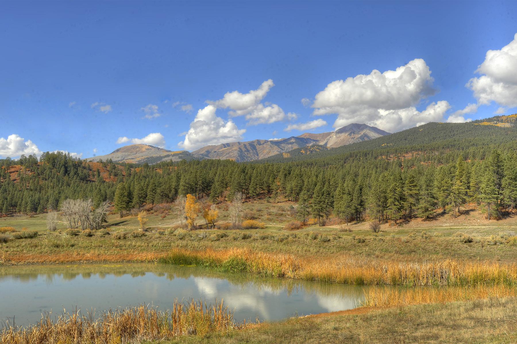 용 매매 에 Silver Mountain Ranch 3800 CR 208 Durango, 콜로라도, 81301 미국