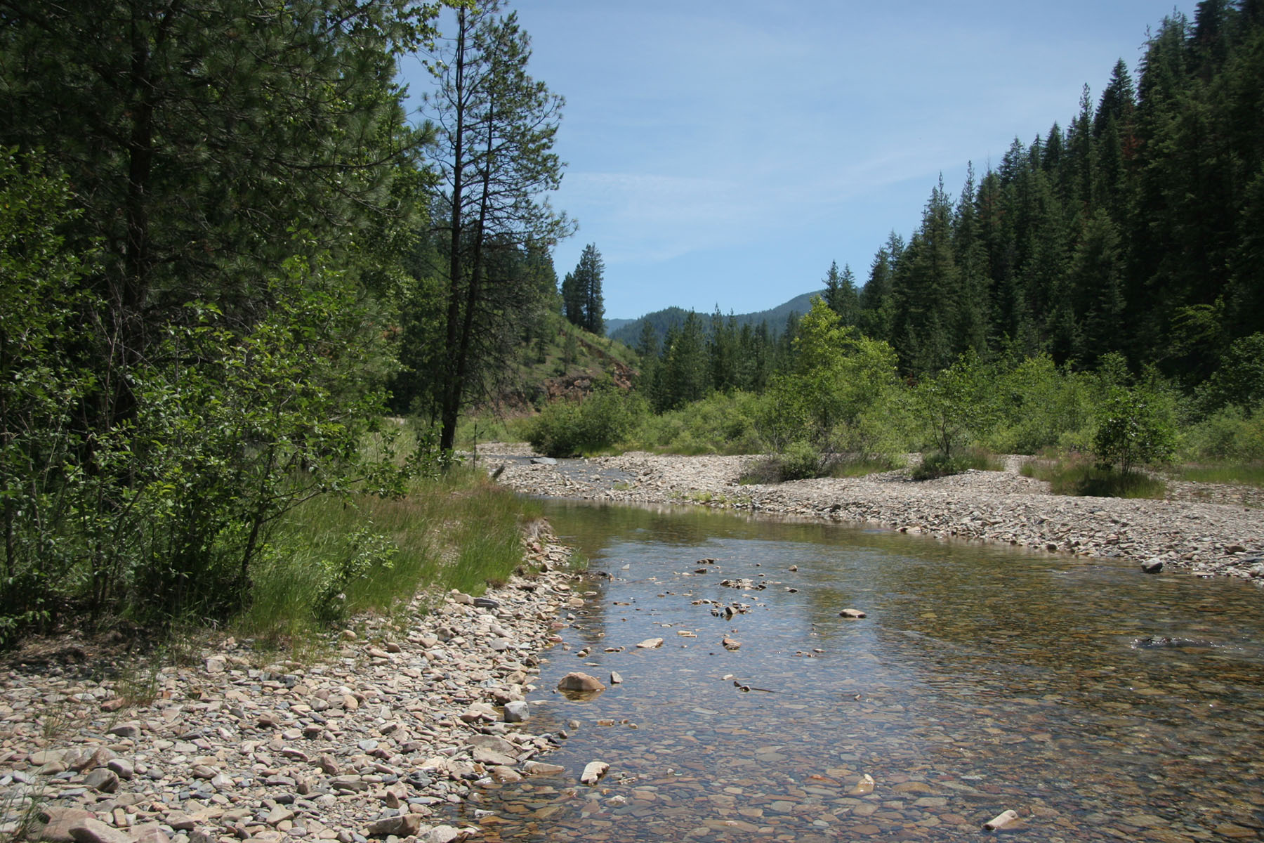 土地 為 出售 在 About 600' of beautiful, fishable Pine Creek NNA 3 East Fork Pine Creek Rd Pinehurst, 愛達荷州, 83850 美國