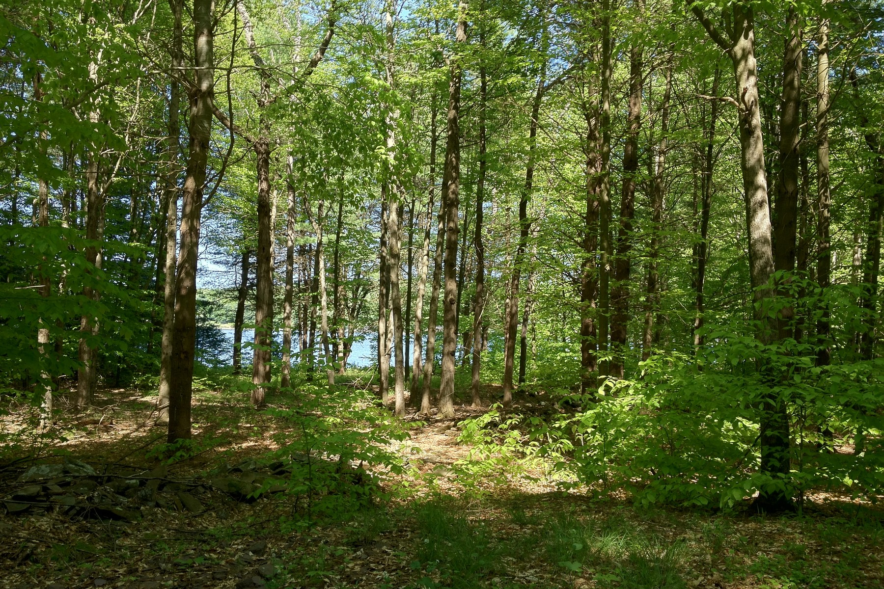 Land for Sale at Level Lakefront Site at The Chapin Estate Lot 20 Woodstone Trl Bethel, New York 12720 United States