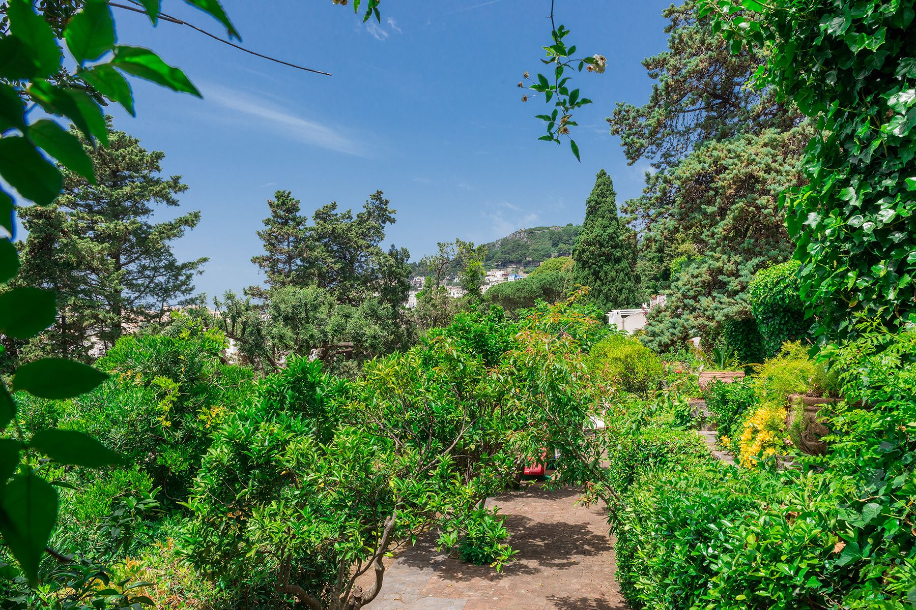 Additional photo for property listing at Villa in the heart of Capri Capri, Naples Italie
