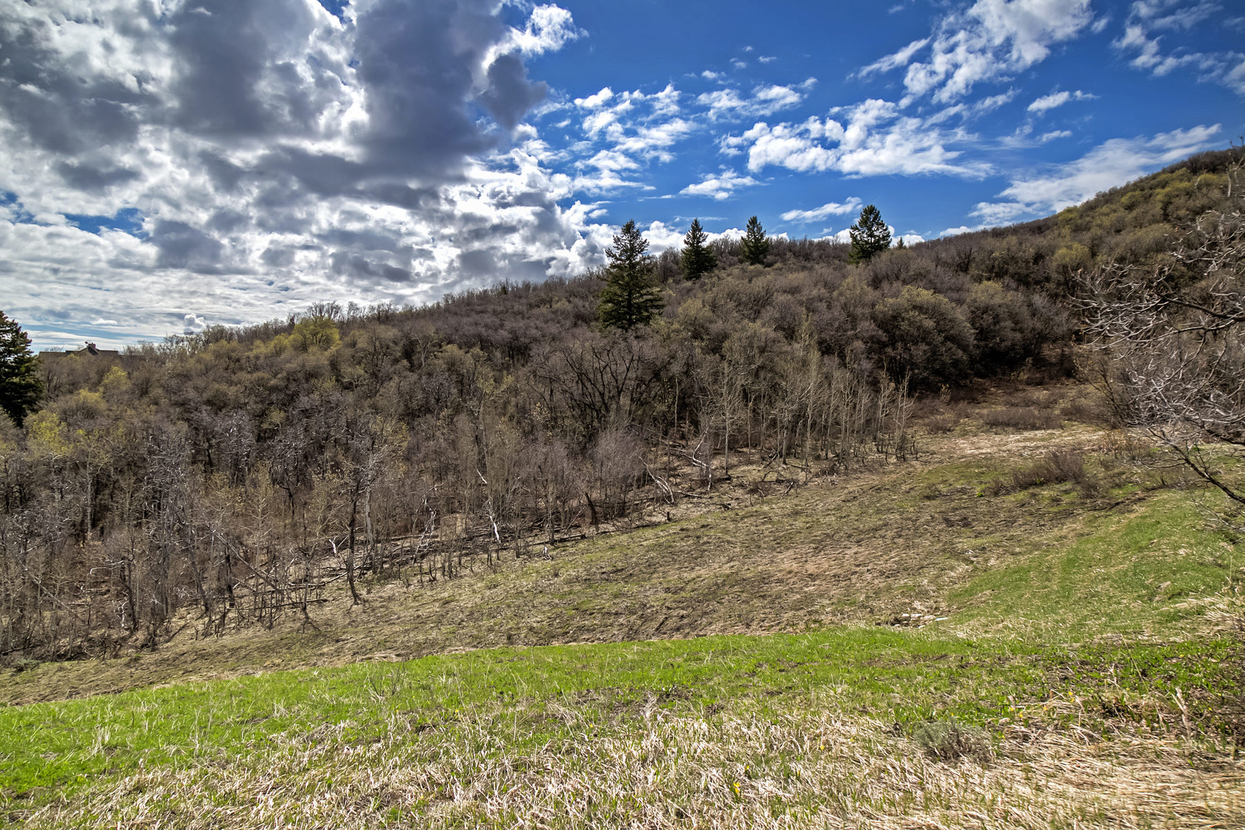 Additional photo for property listing at Most Spectacular View Lots in the Wasatch Range 5608 E Sundance Cir Lot 2 Huntsville, Юта 84317 Соединенные Штаты