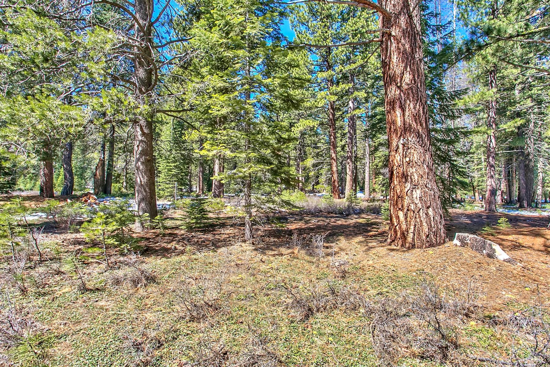 土地 为 销售 在 11830 Bottcher Loop W57 特拉基, 加利福尼亚州 96161 美国