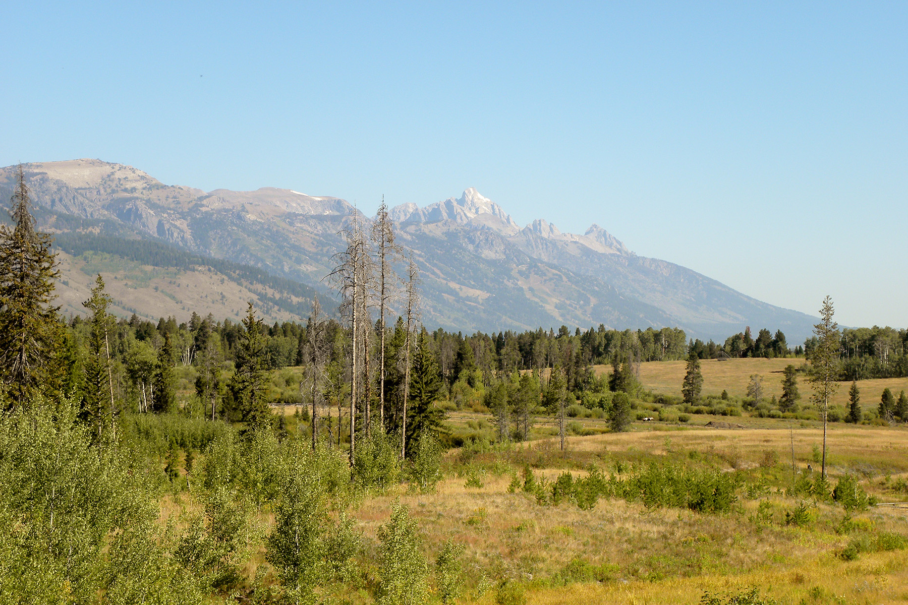 Terrain pour l Vente à Privacy & Views at Crescent H Ranch 1830 Salmonfly Drive Wilson, Wyoming, 83014 Jackson Hole, États-Unis