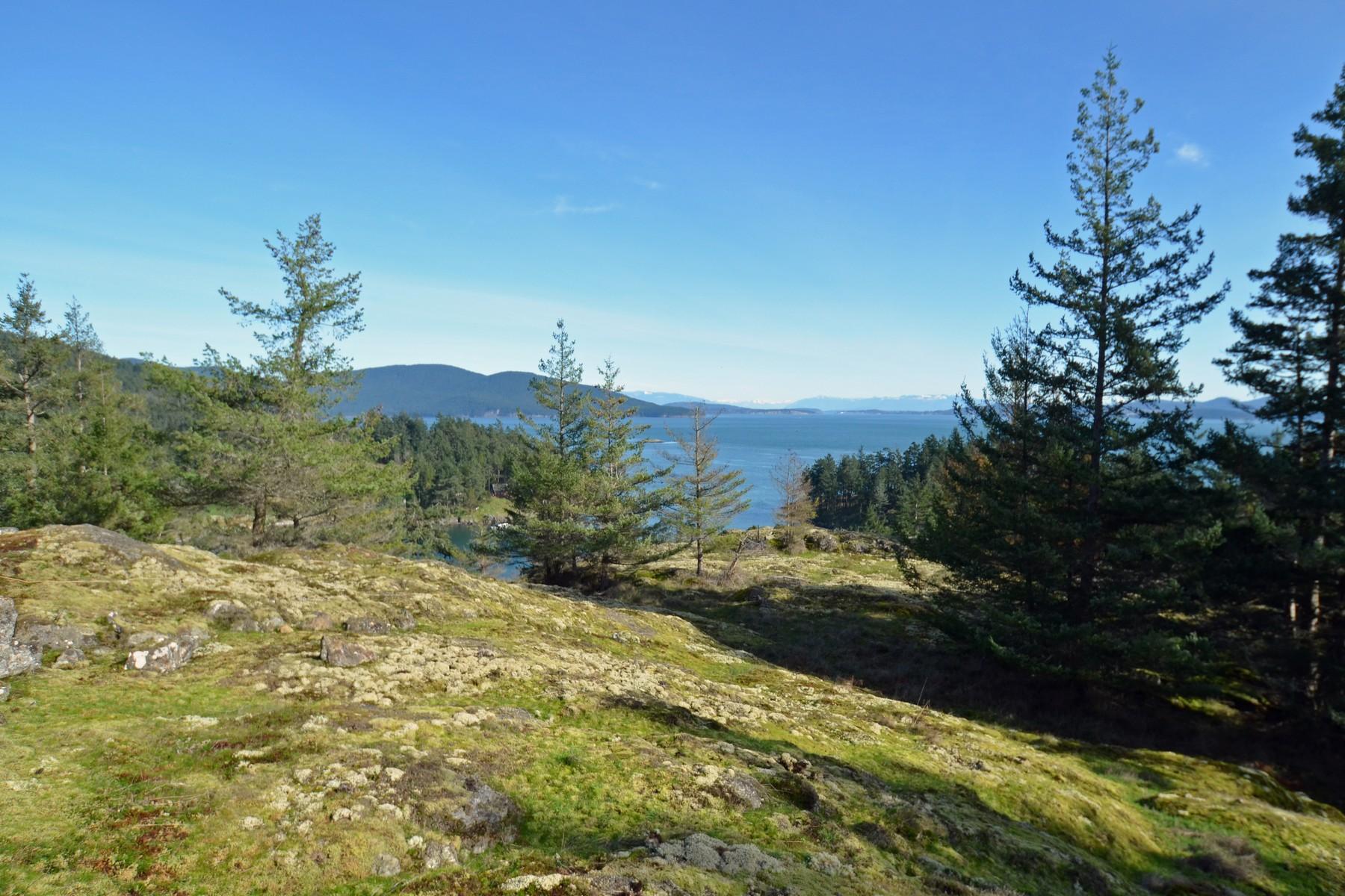 Additional photo for property listing at Blakely Island Land Spencer Rd Blakely Island, Washington 98222 United States