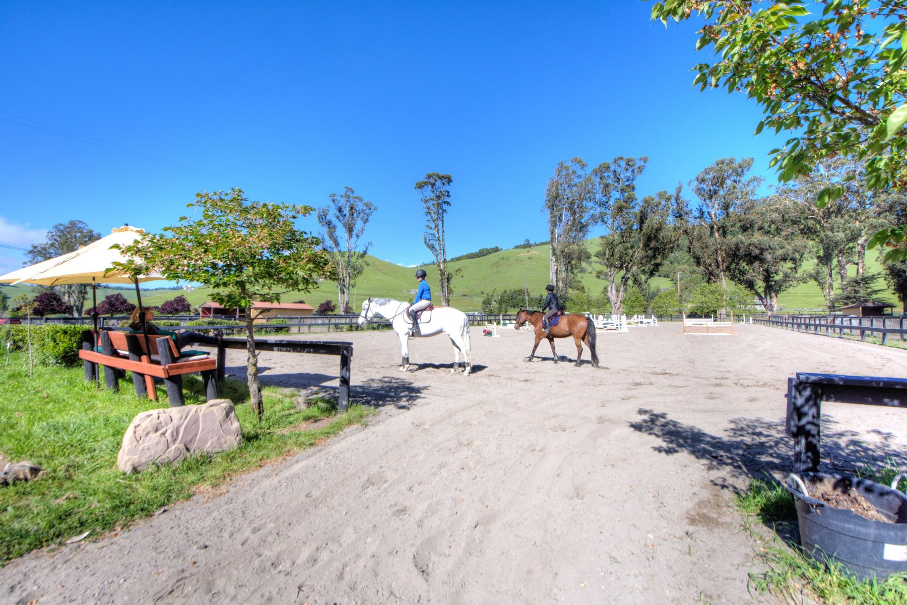Additional photo for property listing at Equestrian Estate 3431 Nicasio Valley Rd Nicasio, 加利福尼亞州 94946 美國