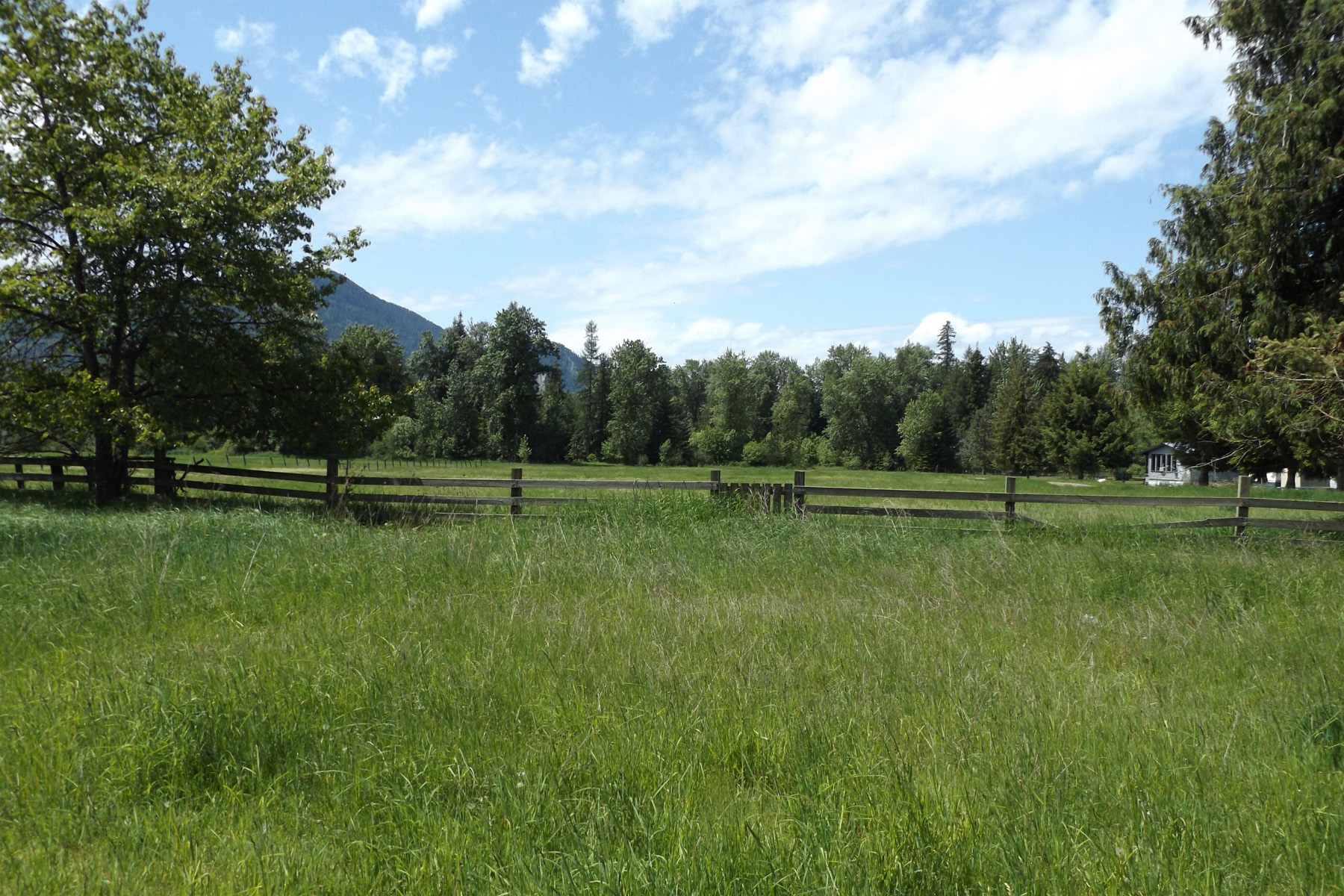 Amazing Development Potential 317 W. 4th Ave. Clark Fork, Idaho 83811 United States