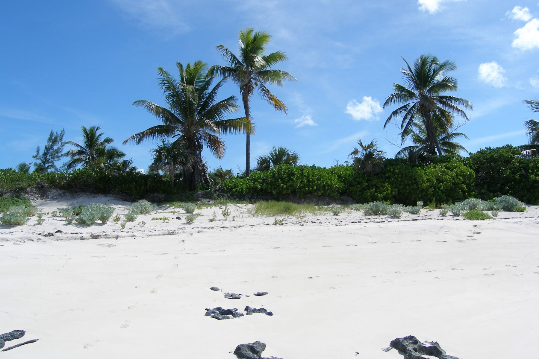 Land for Sale at Nature Lover's Paradise North Palmetto Point, Palmetto Point, Eleuthera Bahamas
