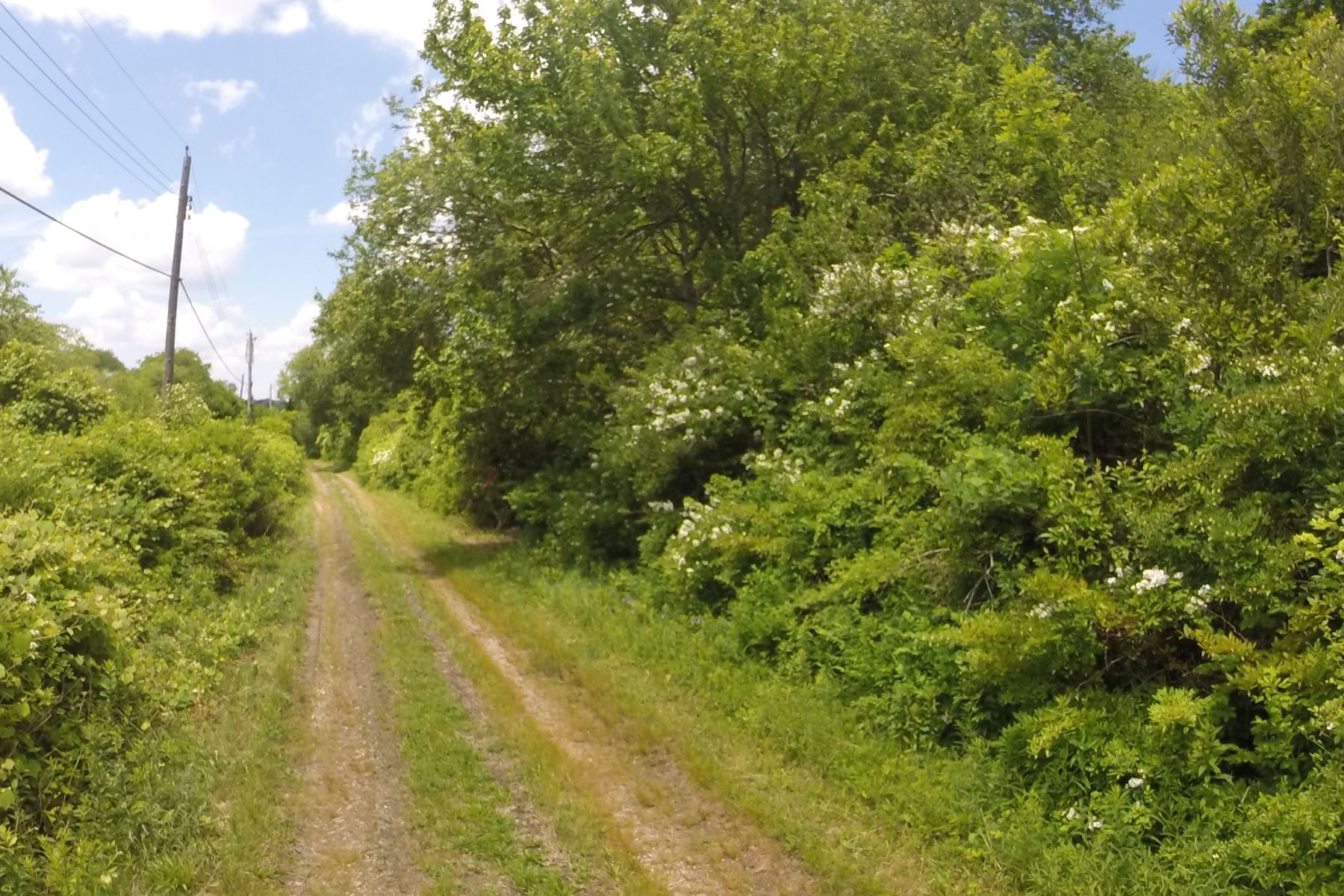 Additional photo for property listing at Estate Building Site 25 Hammersmith Road Newport, Rhode Island 02840 Estados Unidos
