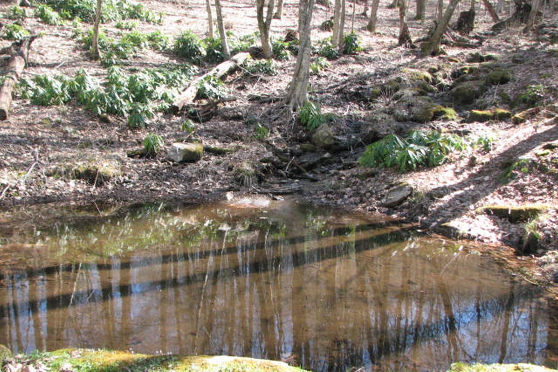 Land for Sale at Ridges of Highlands Lot 3 Historic Highlands Drive Highlands, North Carolina, 28741 United States