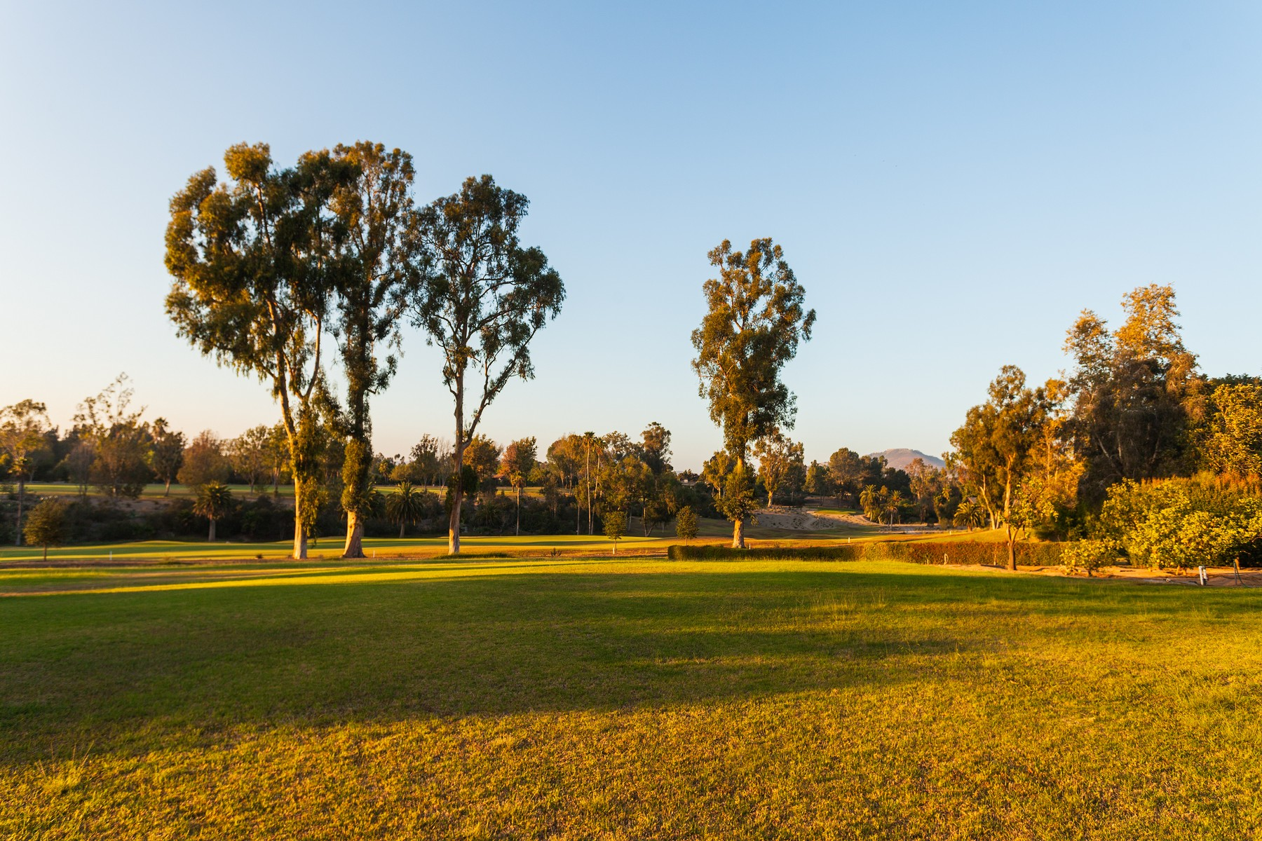 独户住宅 为 销售 在 6380 Paseo Delicias Rancho Santa Fe, 加利福尼亚州 92067 美国
