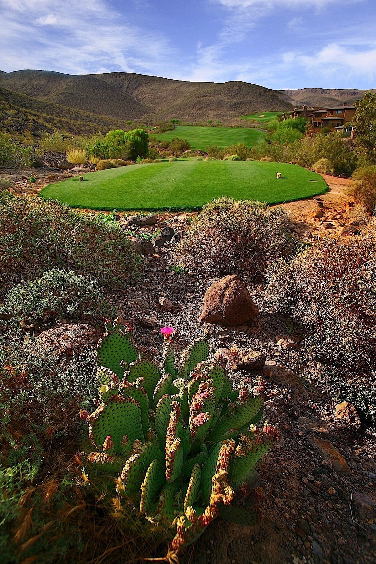 Terrain pour l Vente à 667 Solitude Rock Court Henderson, Nevada, 89012 États-Unis