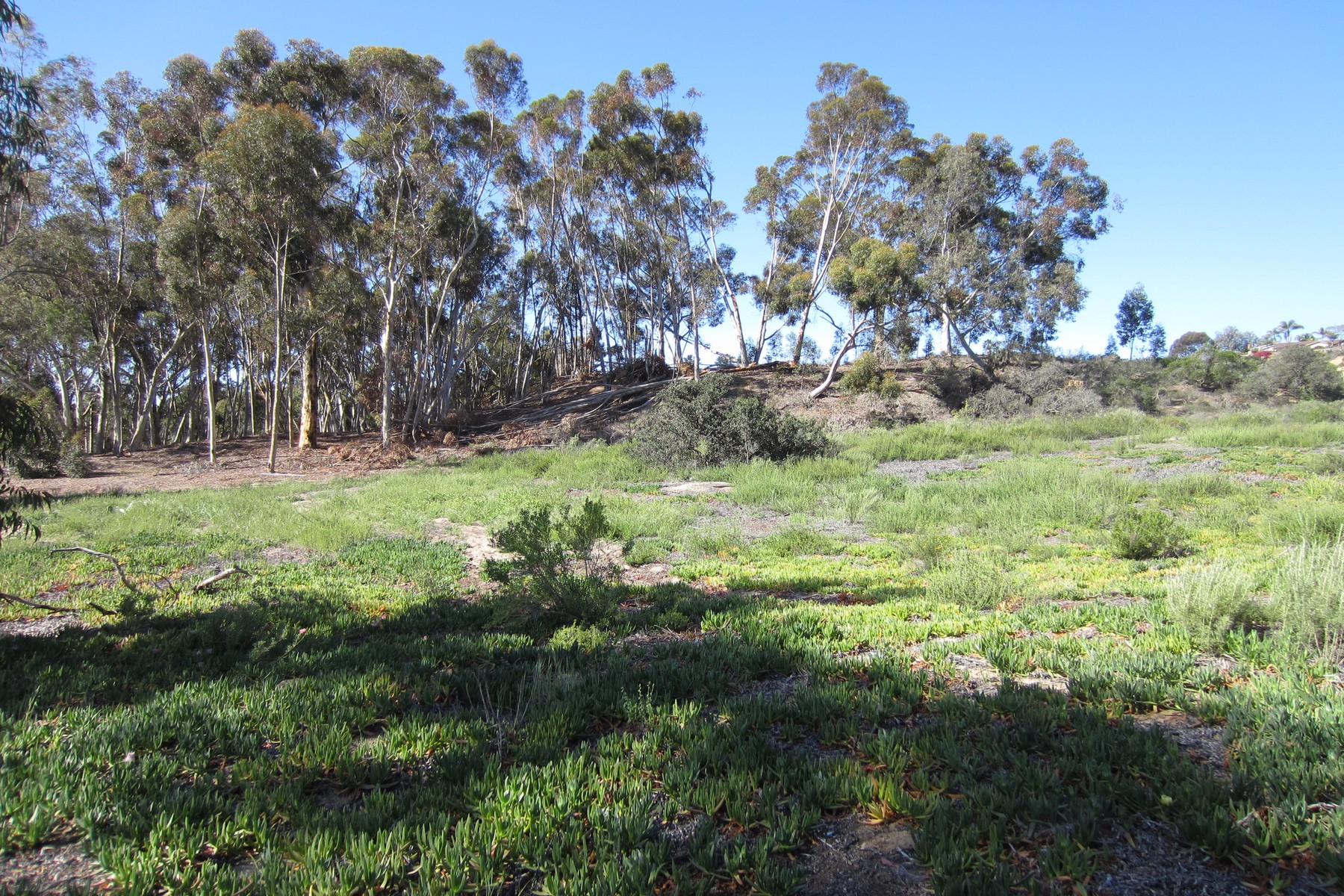 Land for Sale at 00 Ranch View Terrace 49 Encinitas, California, 92024 United States