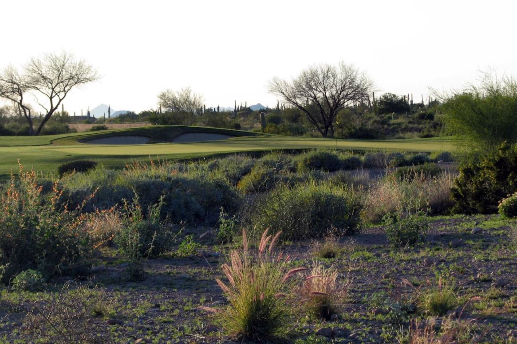 Land für Verkauf beim .64 Acres Lot In The Private Gated Luxury Golf Community Of Superstition Mounta 2866 S Petroglyph Trail #64 Gold Canyon, Arizona, 85118 Vereinigte Staaten