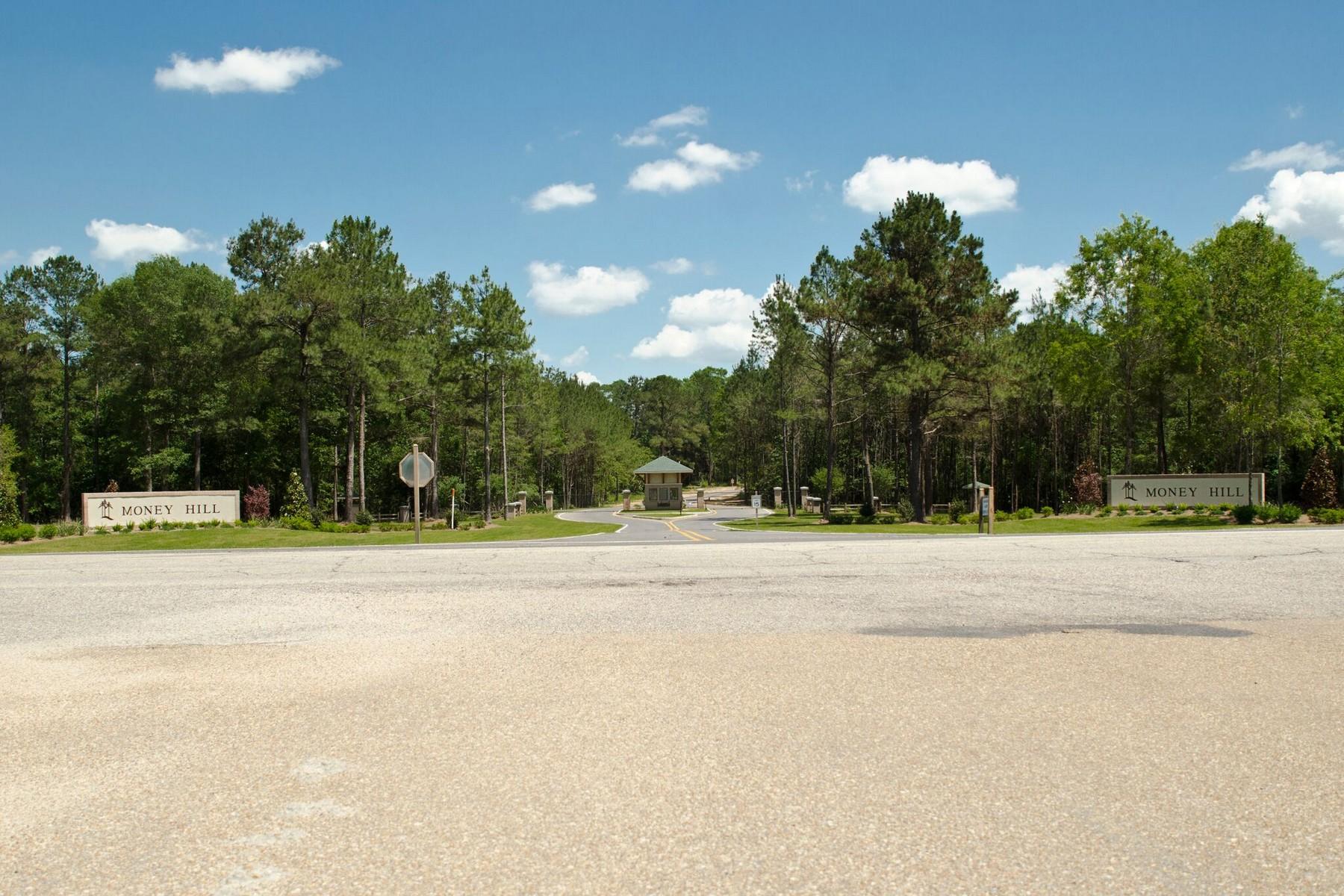 Terrain pour l Vente à 79101 N Money Hill Pk Abita Springs, Louisiana, 70420 États-Unis