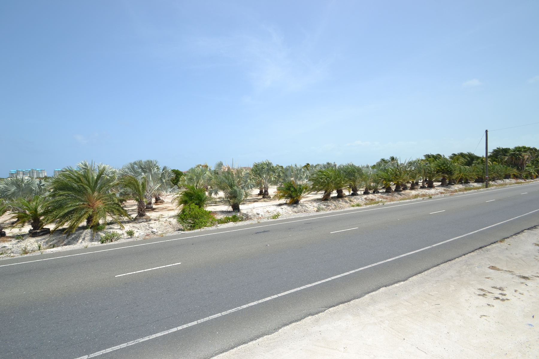 Additional photo for property listing at Large Parcel on Leeward Highway Grace Bay, Providenciales Islas Turcas Y Caicos