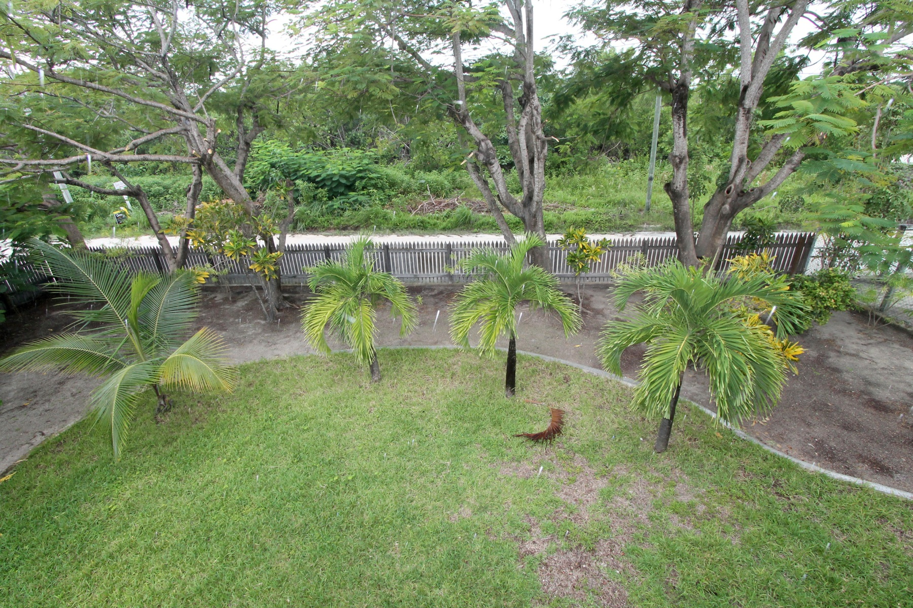 Additional photo for property listing at The Tropical Green House San Pedro Town, Ambergris Caye Belice