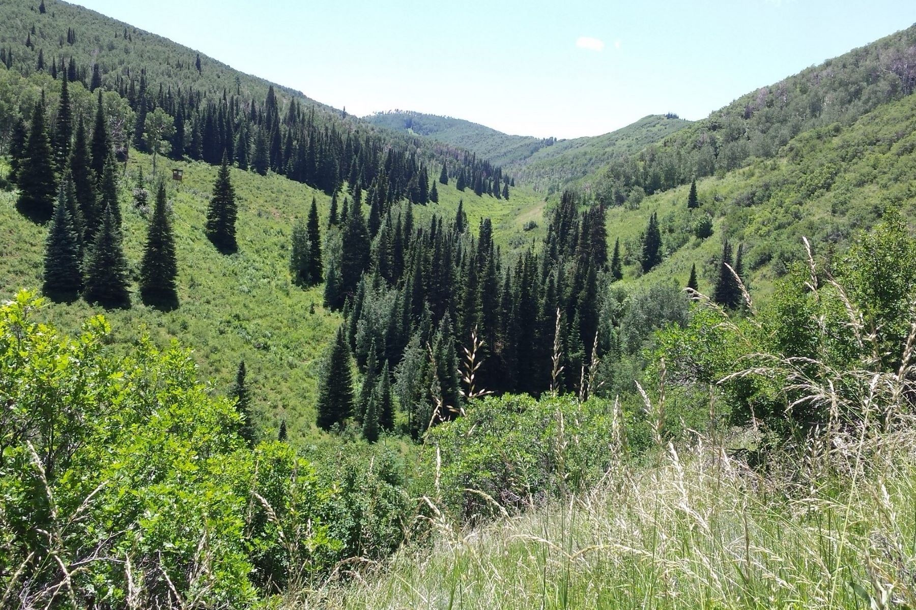 Land for Sale at LIttle Trout Creek 25500 Routt County Road 45Z Oak Creek, Colorado 80467 United States
