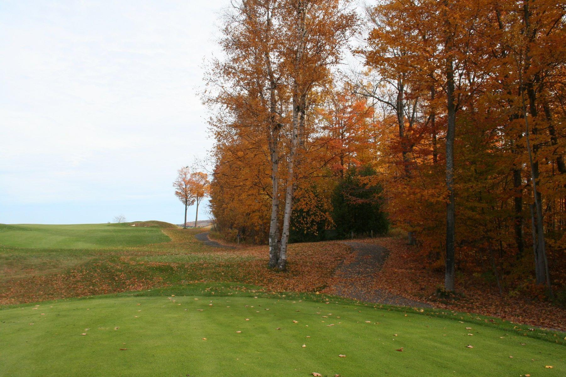 Additional photo for property listing at Coastal Woods 33 5694 Coastal Woods Court Bay Harbor, Michigan 49770 United States