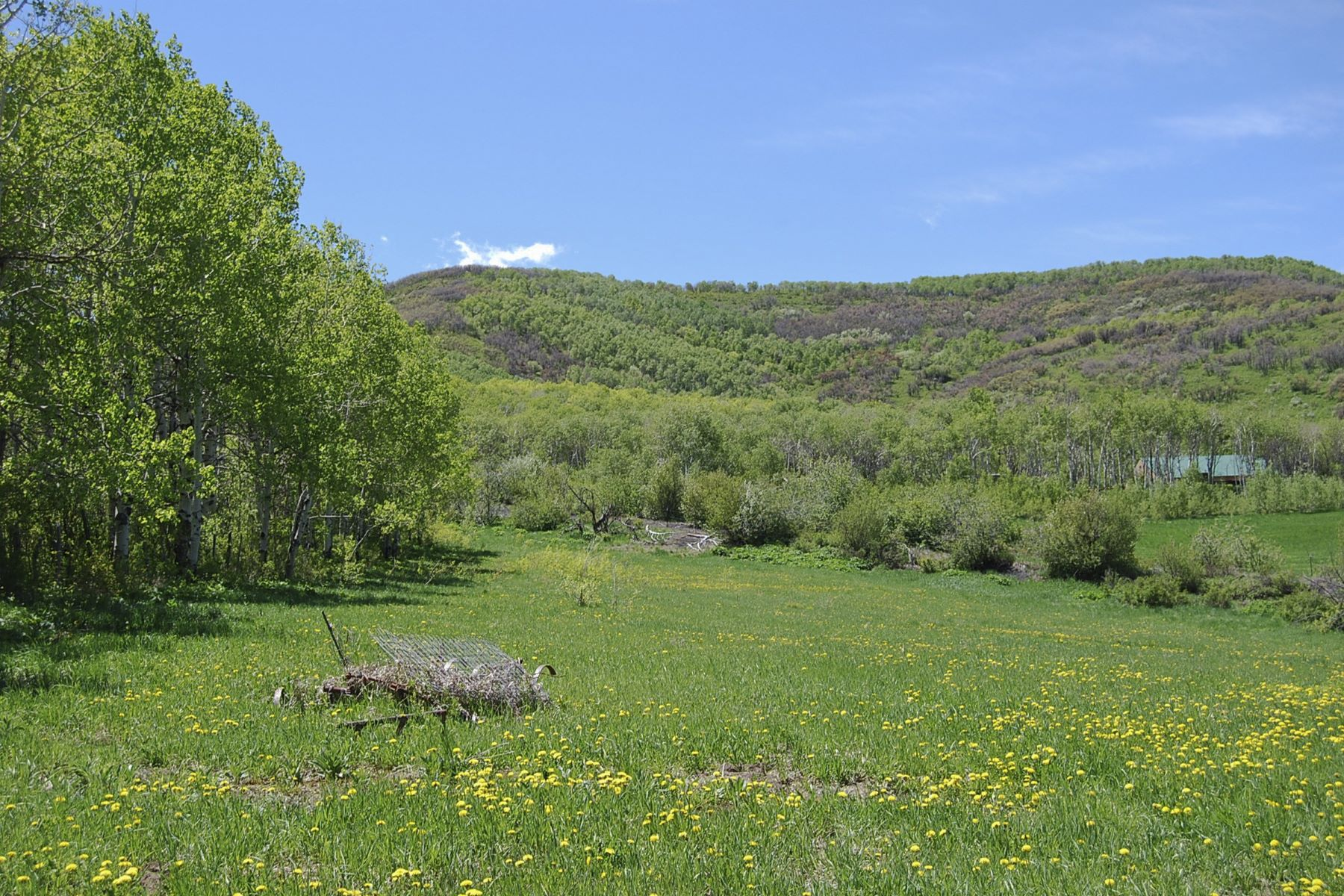 Additional photo for property listing at Gypsum Springs Subdivision 24000 Rossi Lane Oak Creek, Colorado 80467 United States
