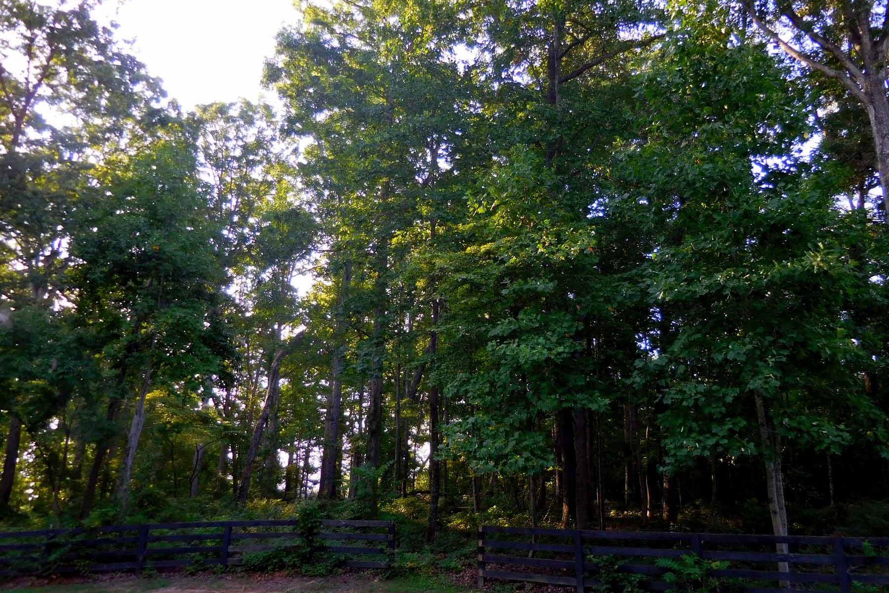Земля для того Продажа на SE Cherokee 2 Acre Lot 130 Sugar Lake Dr Canton, Джорджия, 30115 Соединенные Штаты