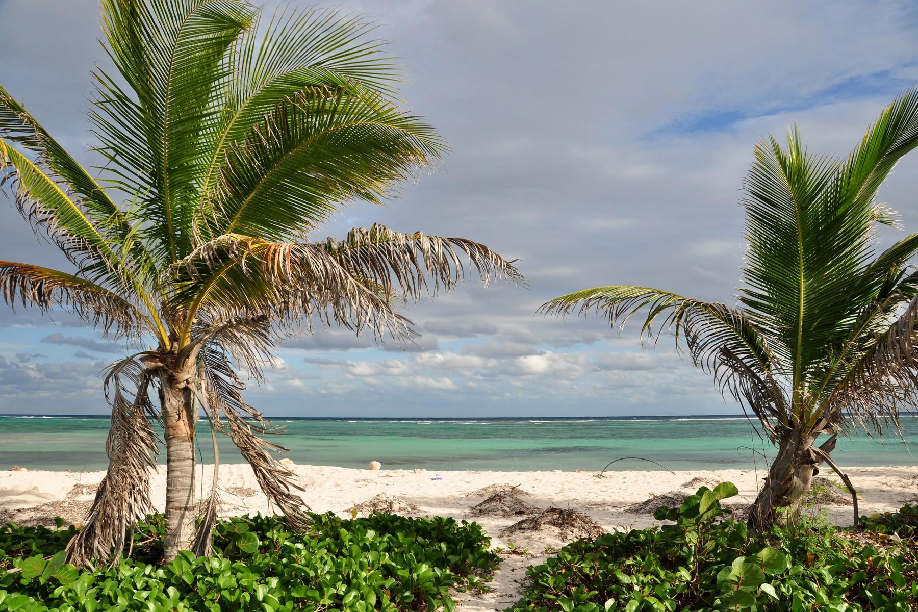Additional photo for property listing at LOTE CON FRENTE DE PLAYA EN MAJAHUAL Beachfront Majahual Lot Carretera Cafetal-Majahual Majahual, Quintana Roo 77976 México