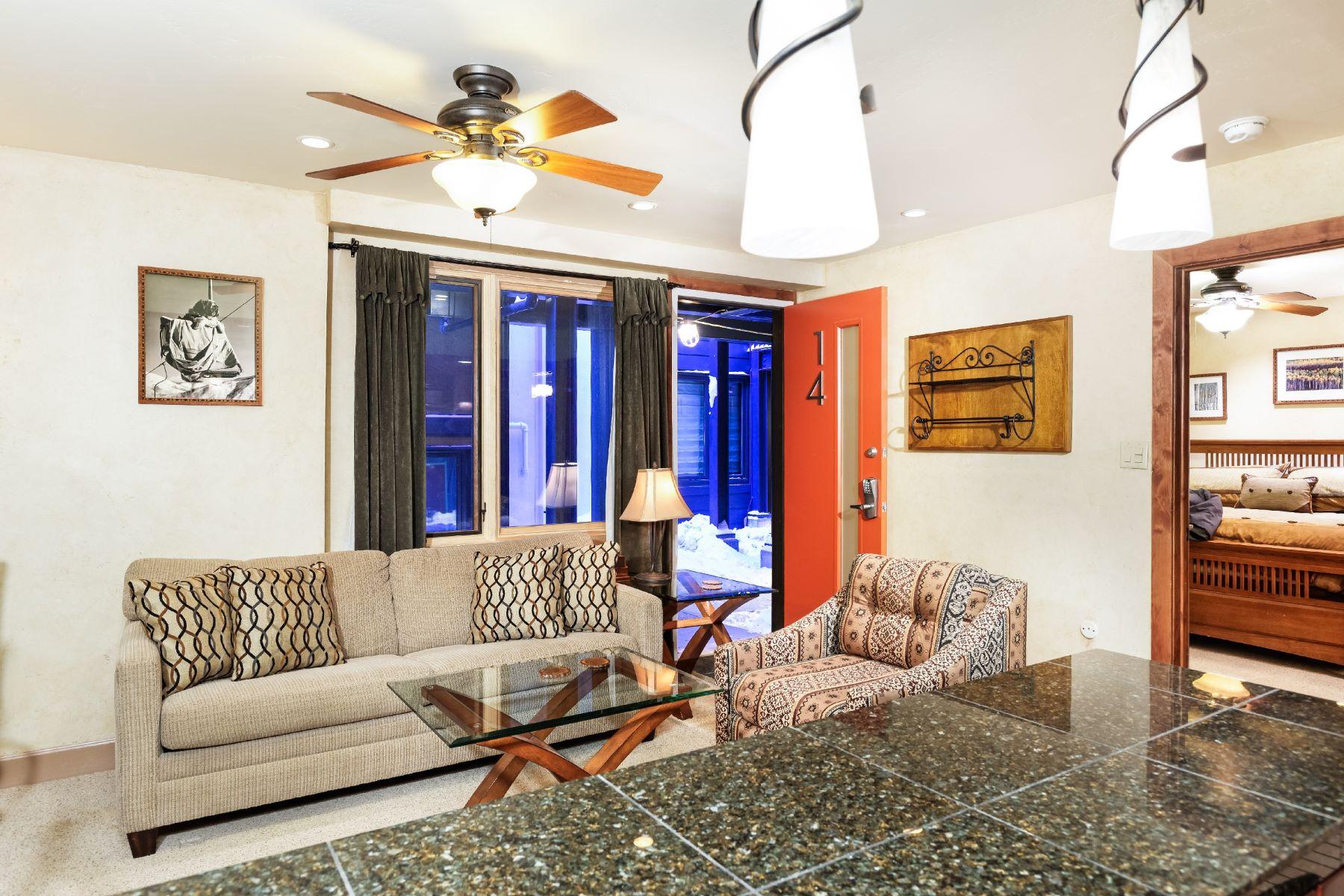 Kat Mülkiyeti için Satış at Fifth Avenue 800 S. Mill Street Unit 14 Aspen, Colorado, 81611 Amerika Birleşik Devletleri