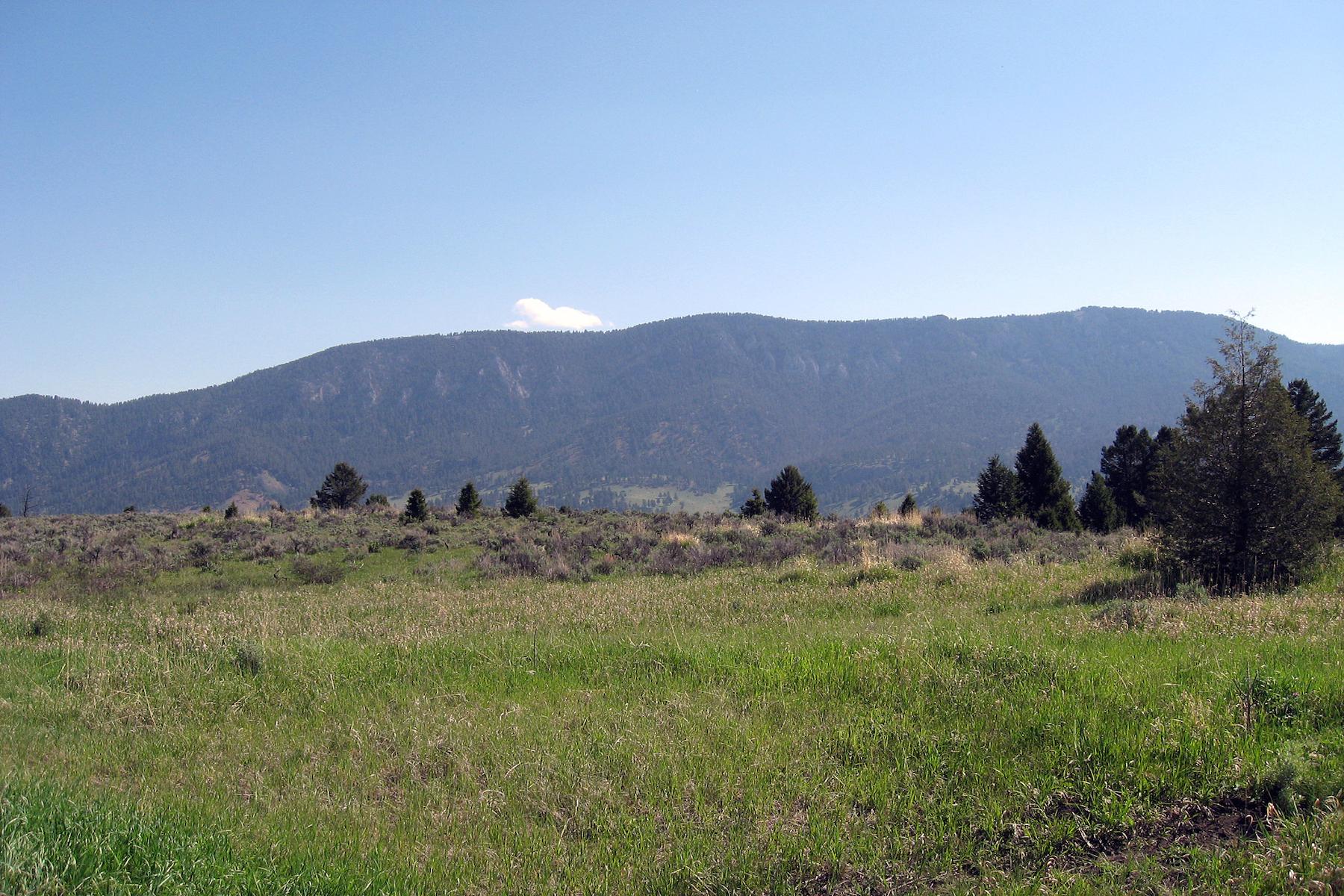 Terreno per Vendita alle ore Porcupine Park Homesite Talus Trail, Porcupine Park Lot 35 Big Sky, Montana, 59716 Stati Uniti