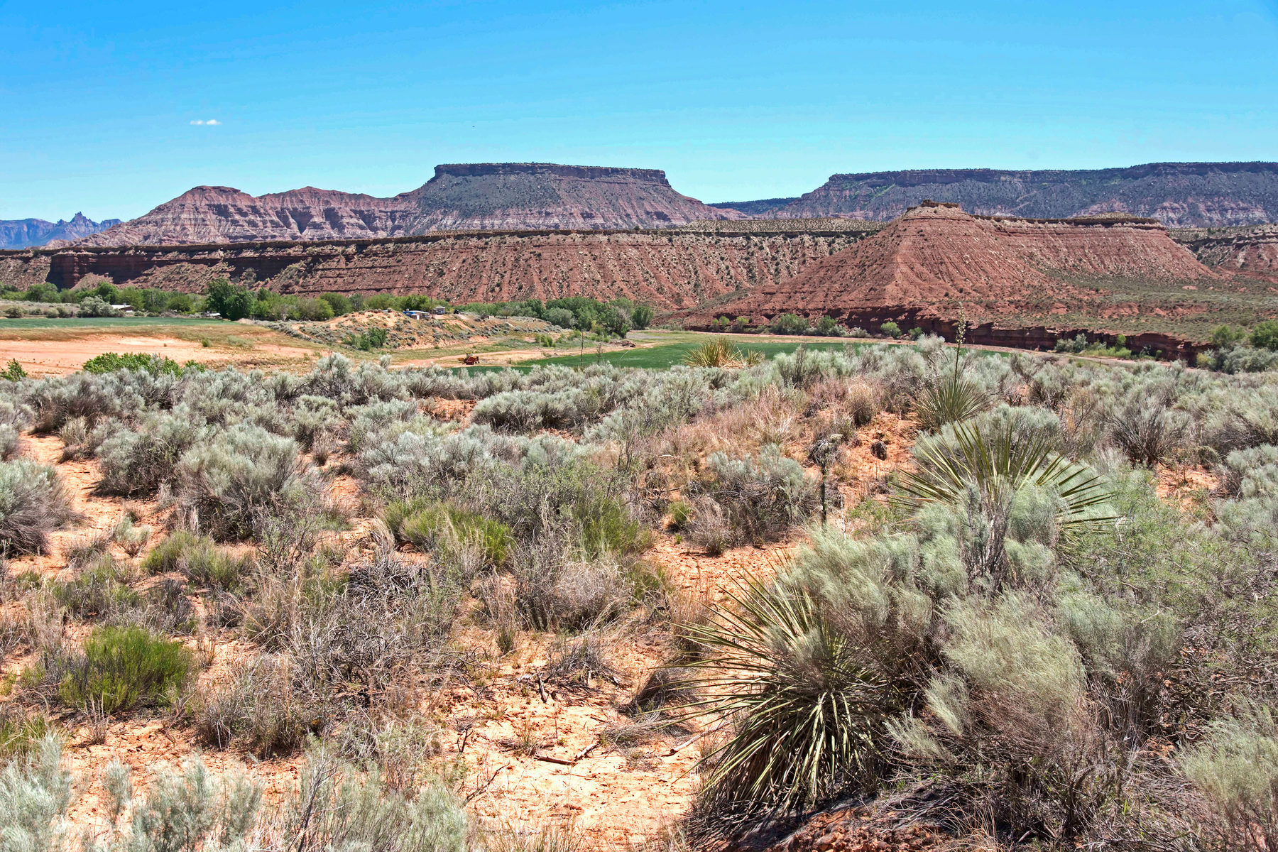 Terreno por un Venta en 5 ACRES CLOSE TO ZION NATIONAL PARK! 200 North 600 West Virgin, Utah 84779 Estados Unidos