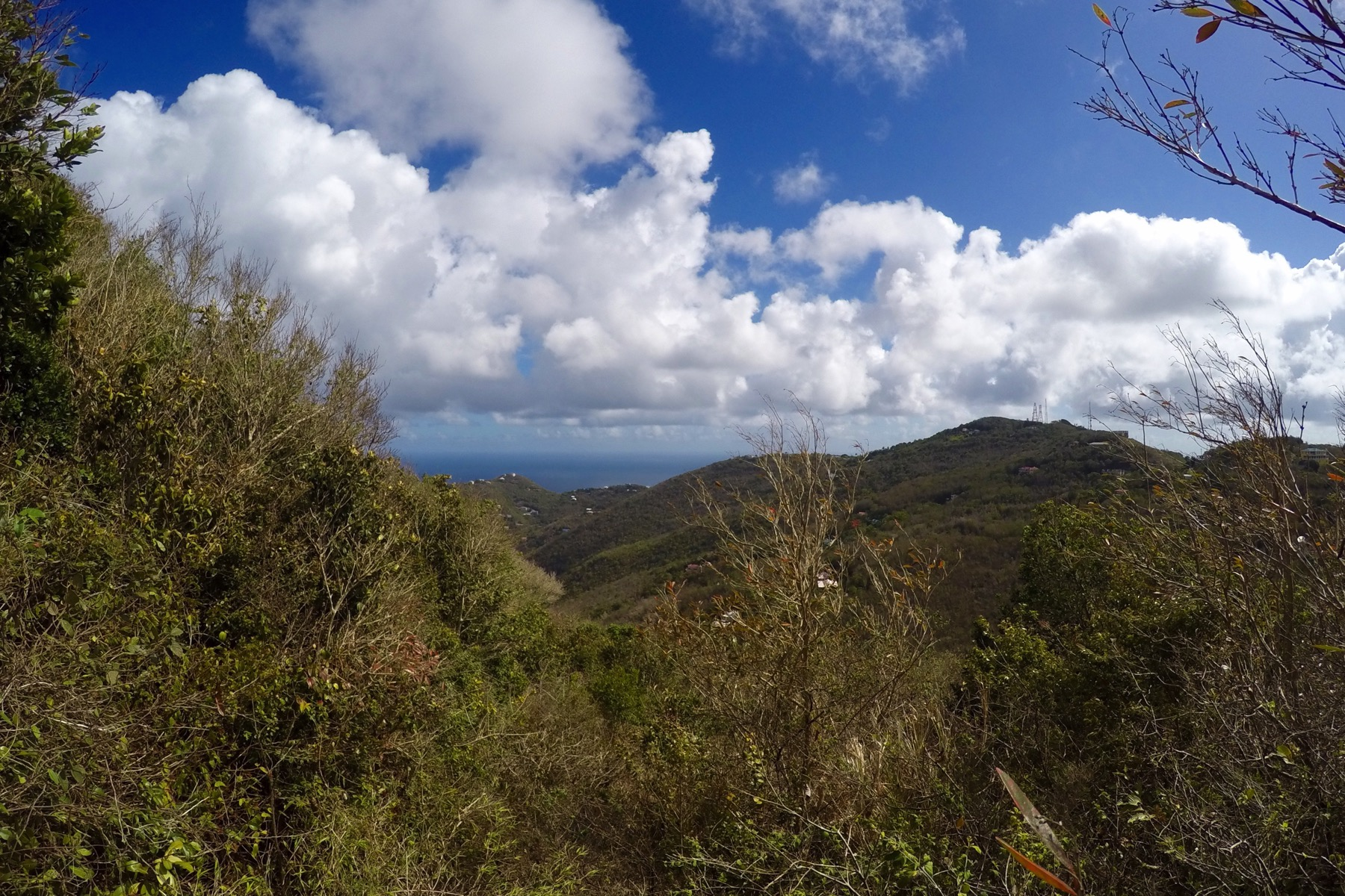 Земля для того Продажа на Mount Sage Land Lot 5 Sage Mountain, Tortola British Virgin Islands