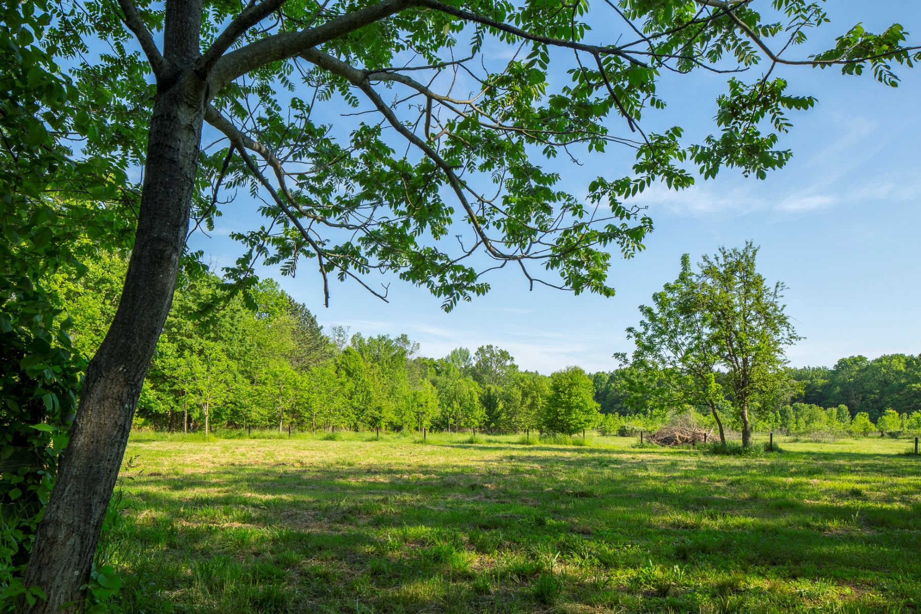Additional photo for property listing at Charming Oakland Farm and 60+/- Picturesque Acres - Springfield Township 144 Warner Avenue Columbus, 新泽西州 08022 美国