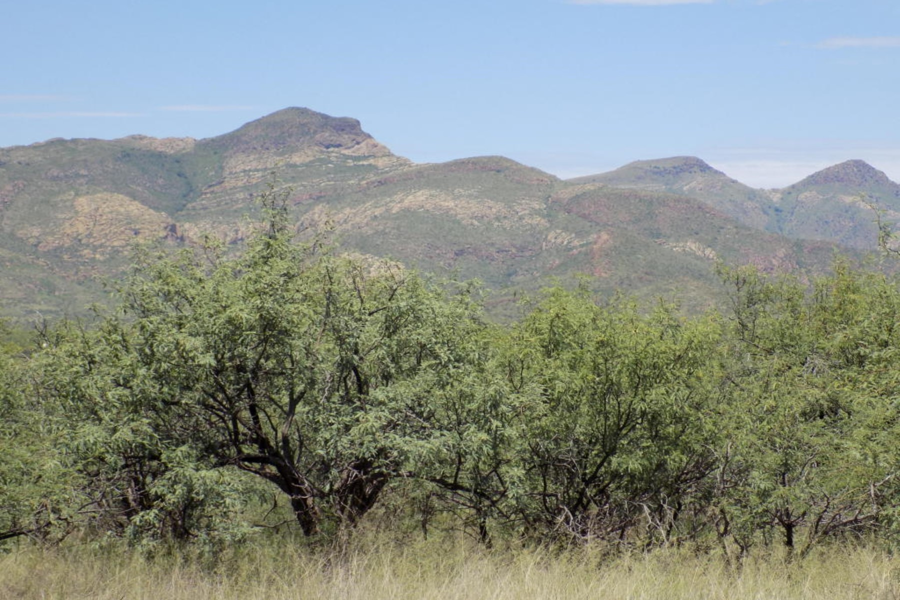 Land for Sale at Wonderful 84.04 acre lot. TBD RIO RICO, Rio Rico, Arizona, 85648 United States