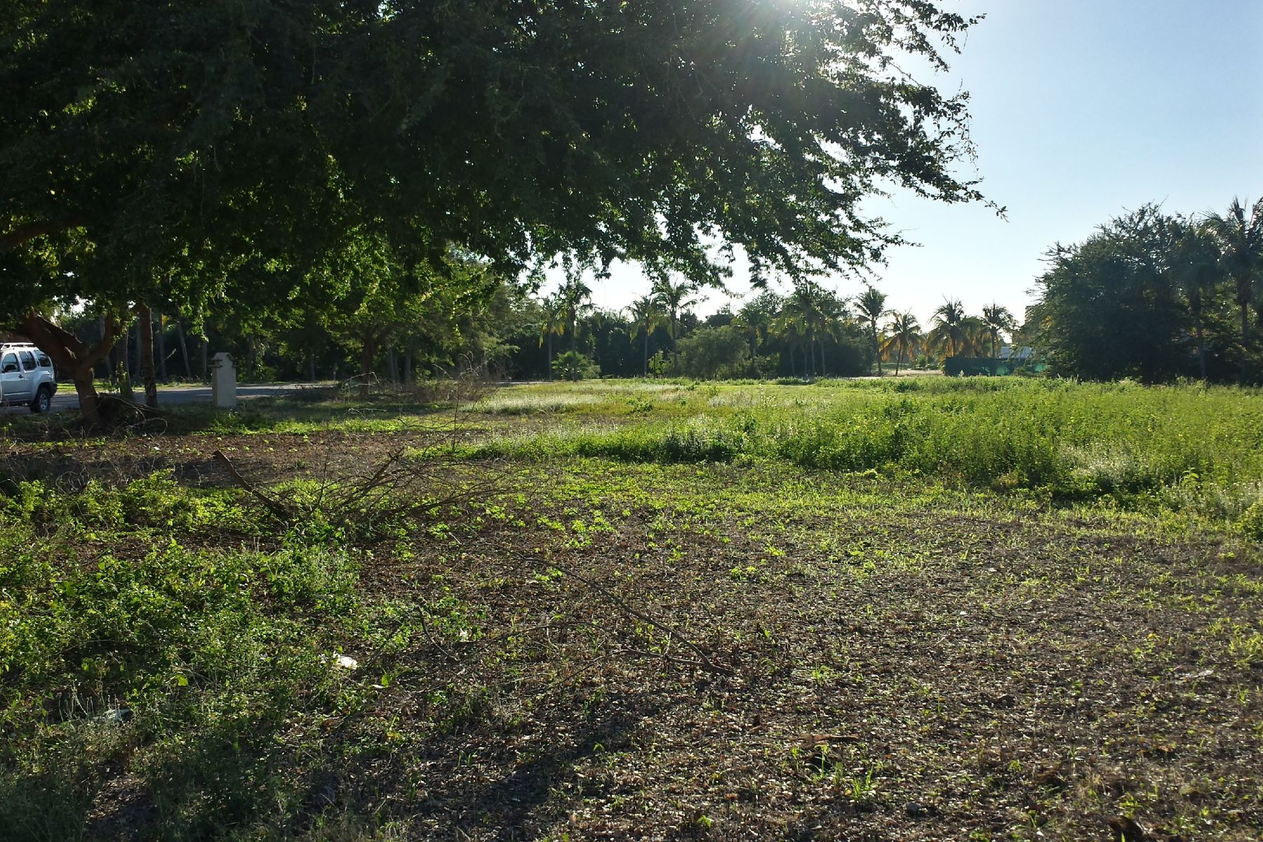 Land for Sale at Residential Lot, 18 Isla Guacamayas, El Tigre Golf Course, Nuevo Vallarta Lote 18 Isla Guacamaya El Tigre Nuevo Vallarta, 63735 Mexico